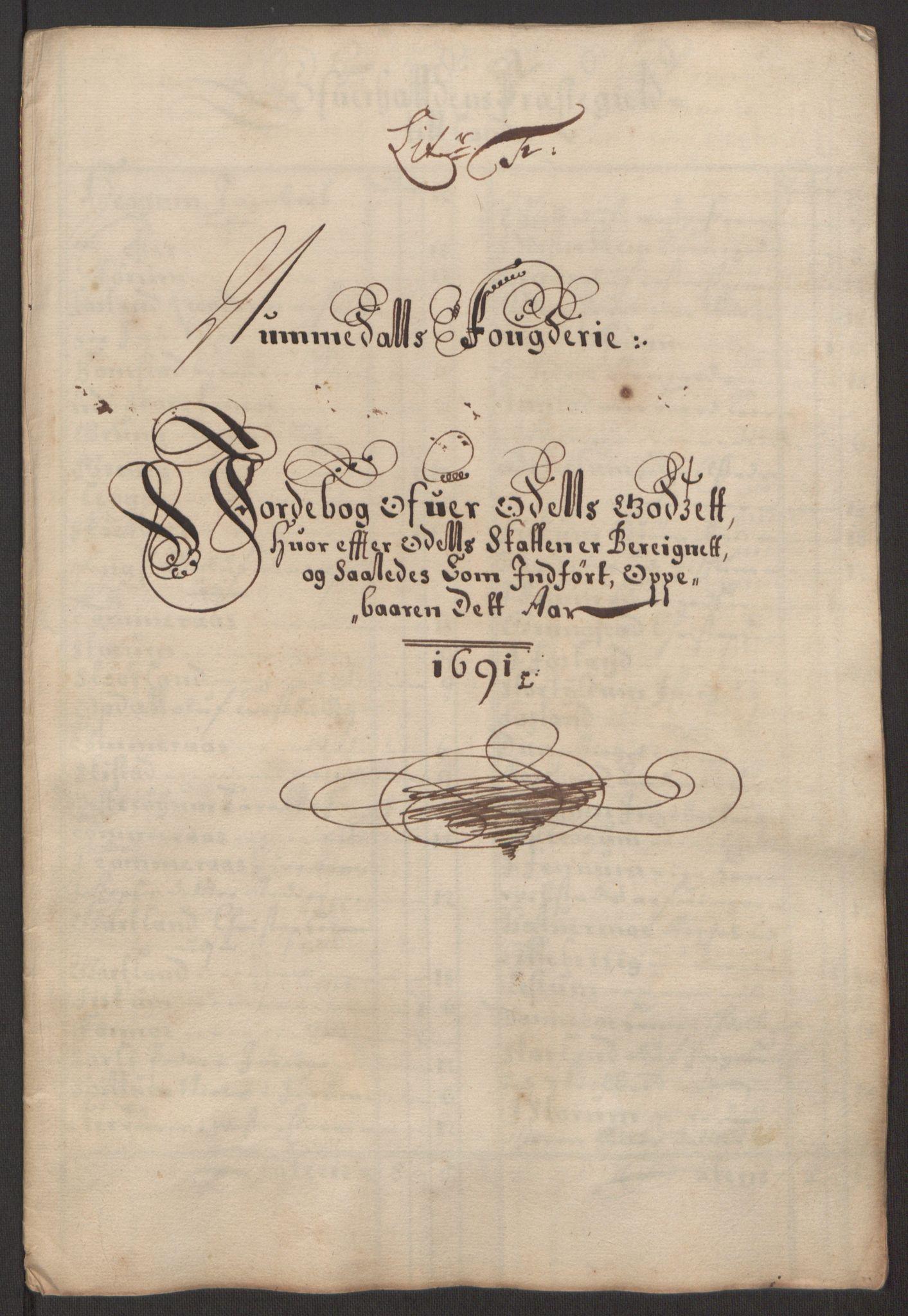 RA, Rentekammeret inntil 1814, Reviderte regnskaper, Fogderegnskap, R64/L4423: Fogderegnskap Namdal, 1690-1691, s. 223