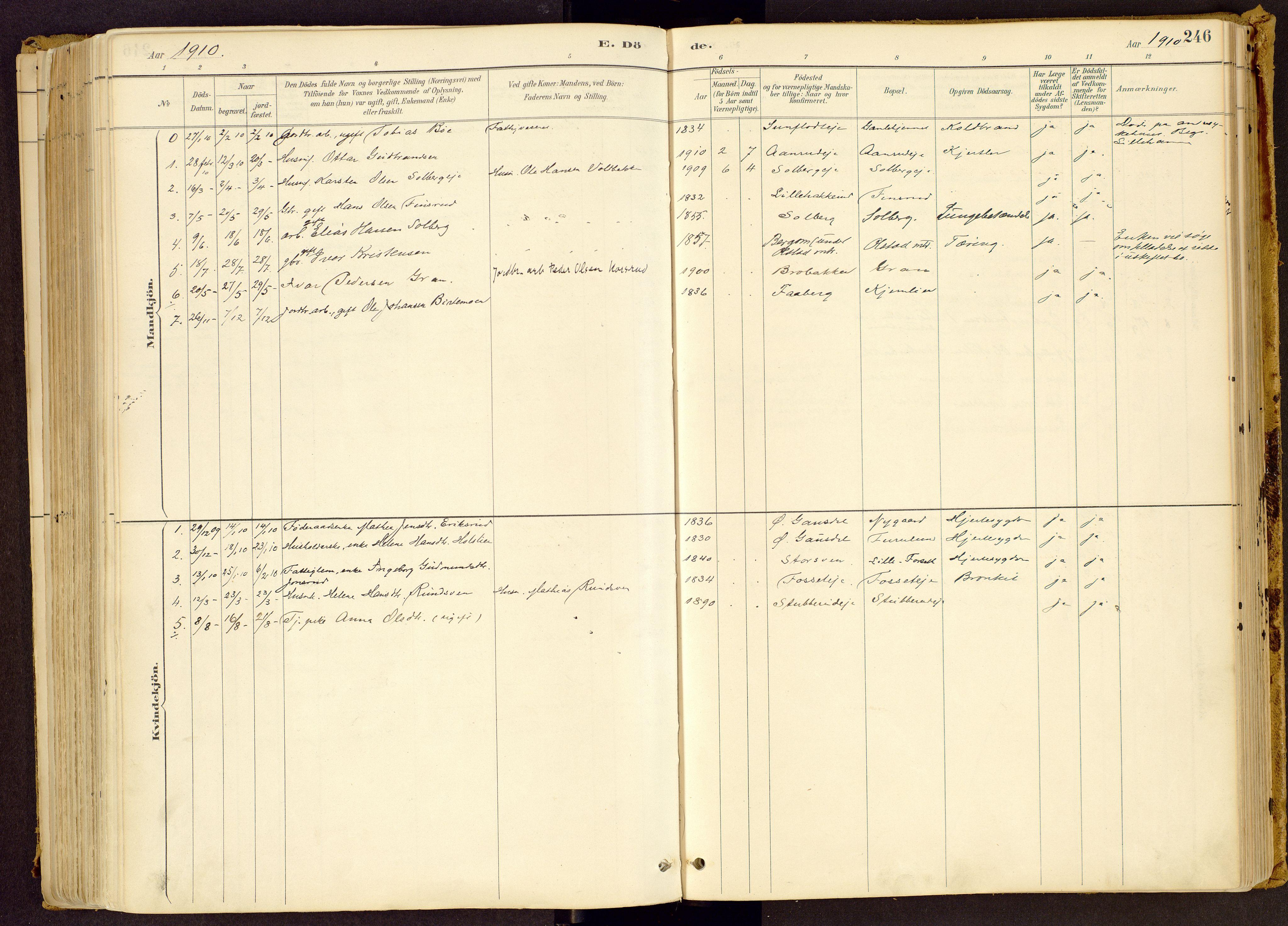 SAH, Vestre Gausdal prestekontor, Ministerialbok nr. 1, 1887-1914, s. 246