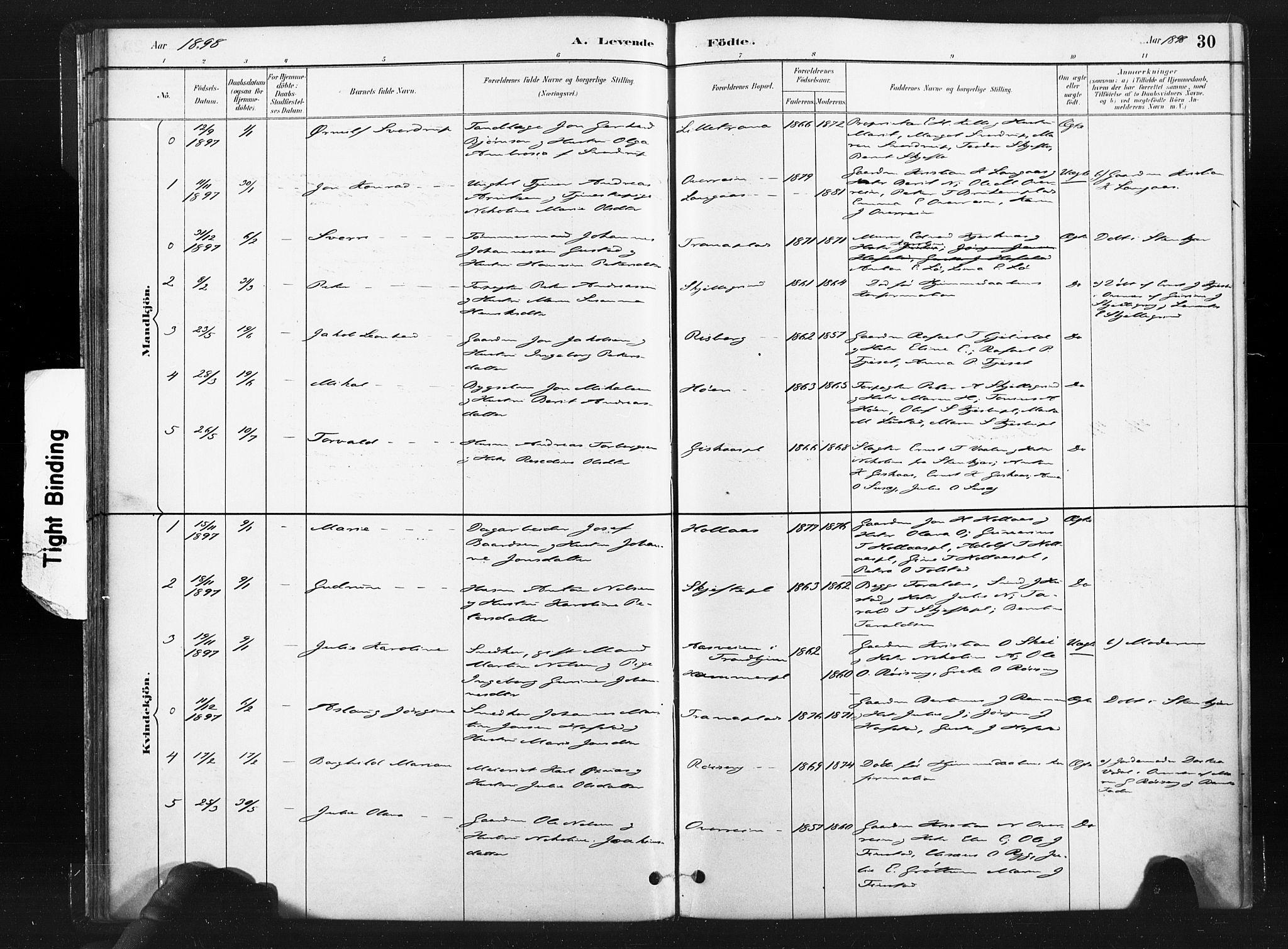 SAT, Ministerialprotokoller, klokkerbøker og fødselsregistre - Nord-Trøndelag, 736/L0361: Ministerialbok nr. 736A01, 1884-1906, s. 30