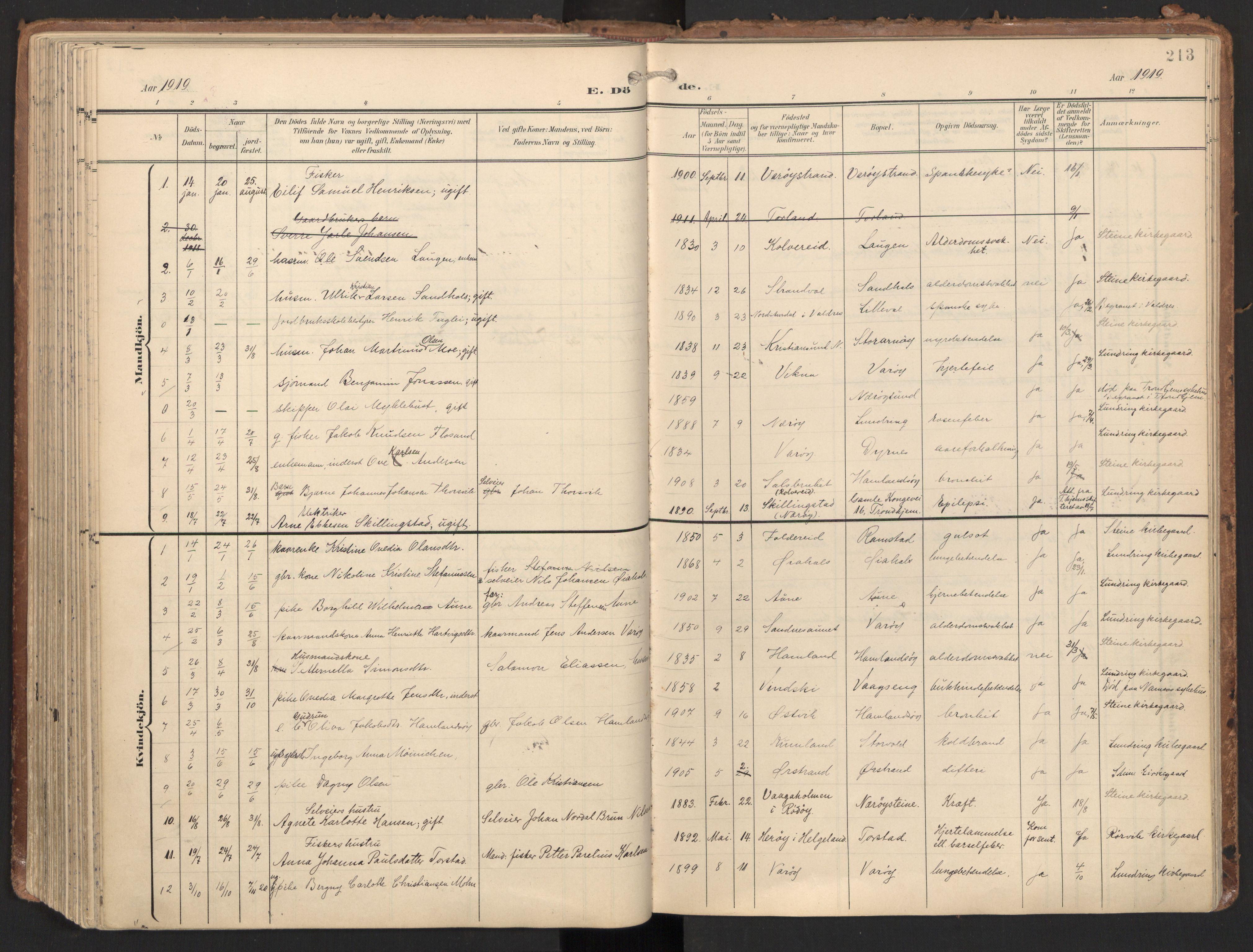 SAT, Ministerialprotokoller, klokkerbøker og fødselsregistre - Nord-Trøndelag, 784/L0677: Ministerialbok nr. 784A12, 1900-1920, s. 213