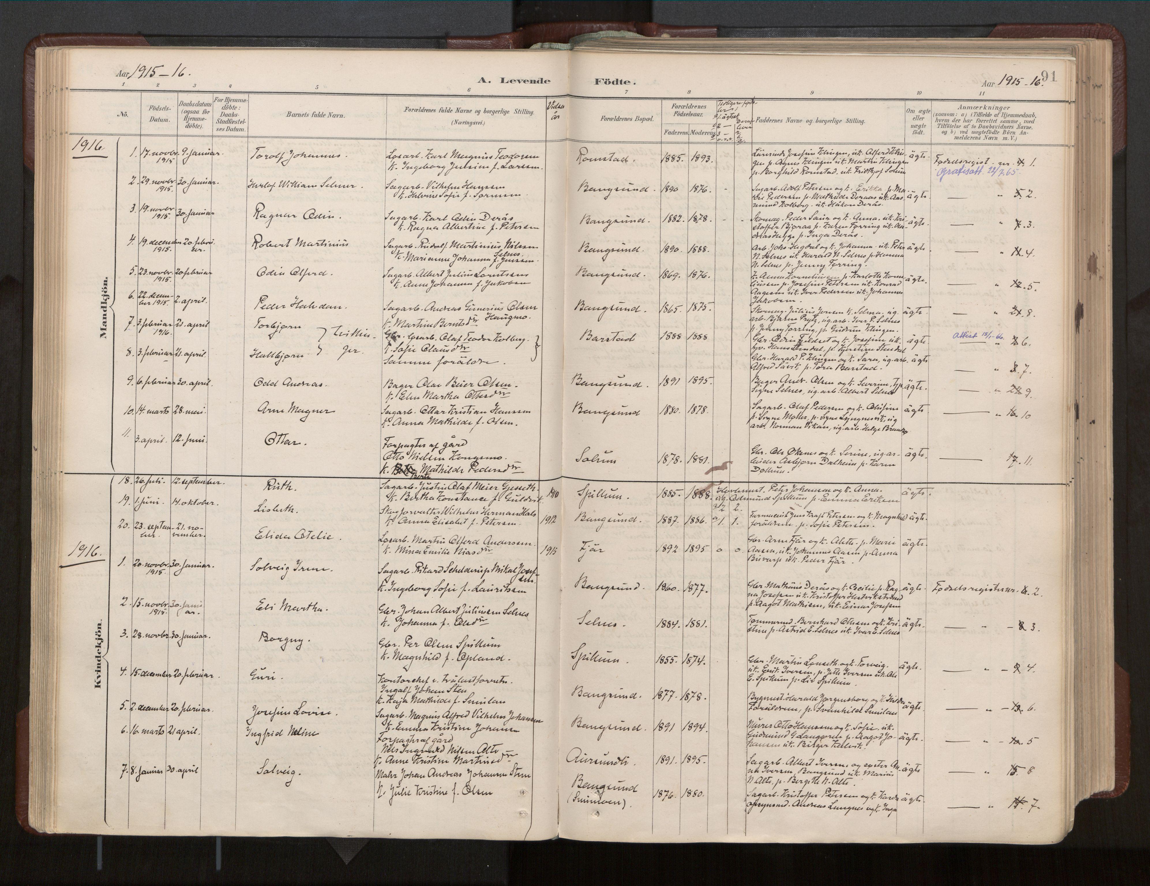SAT, Ministerialprotokoller, klokkerbøker og fødselsregistre - Nord-Trøndelag, 770/L0589: Ministerialbok nr. 770A03, 1887-1929, s. 91