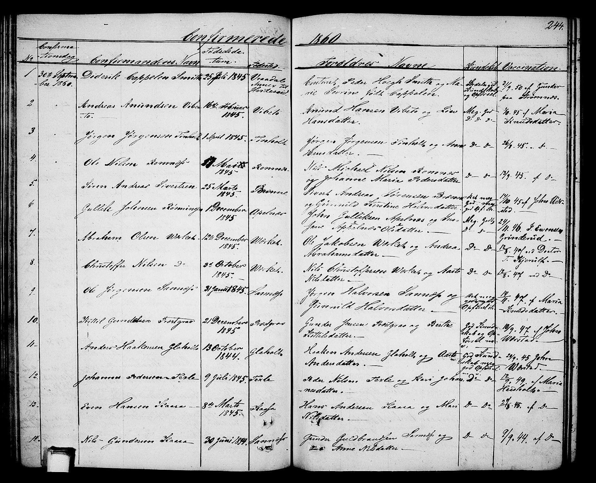 SAKO, Holla kirkebøker, G/Ga/L0003: Klokkerbok nr. I 3, 1849-1866, s. 244