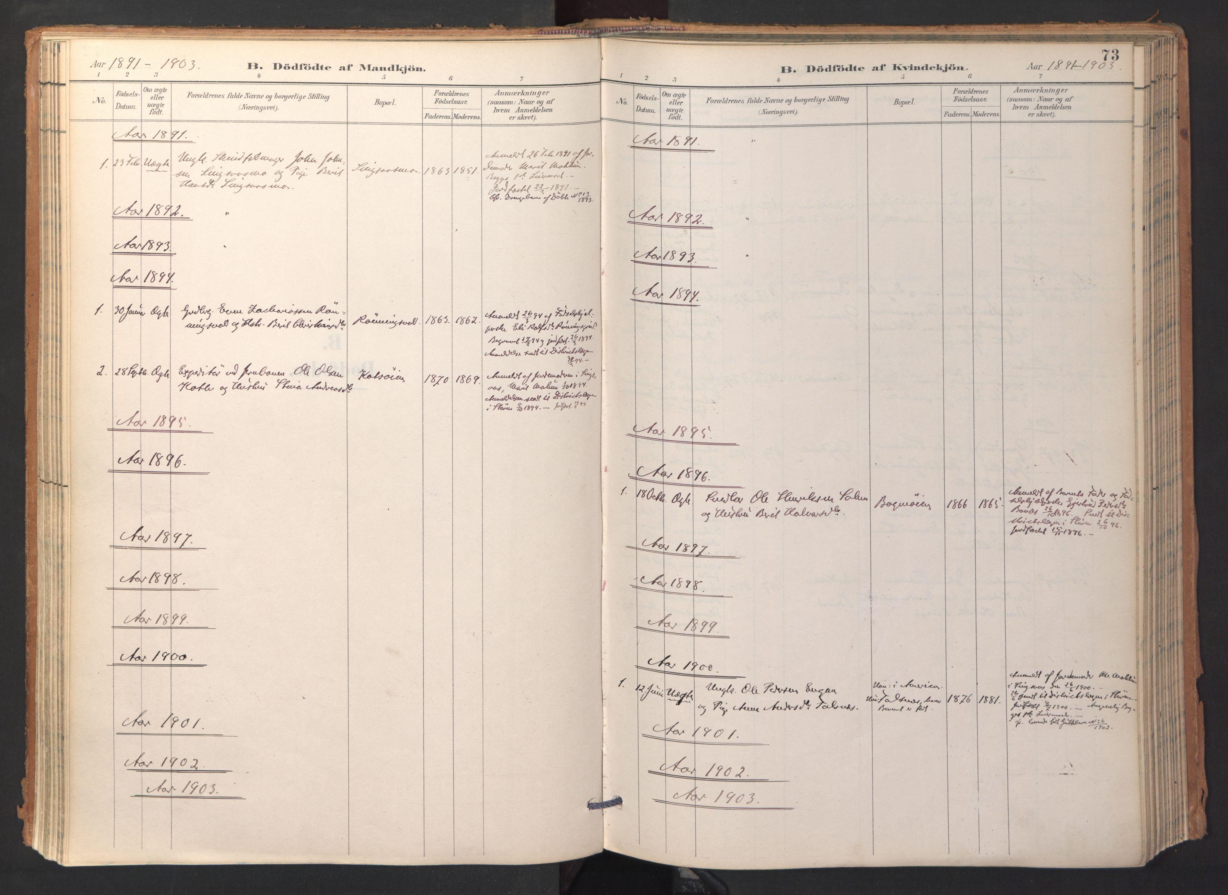 SAT, Ministerialprotokoller, klokkerbøker og fødselsregistre - Sør-Trøndelag, 688/L1025: Ministerialbok nr. 688A02, 1891-1909, s. 73