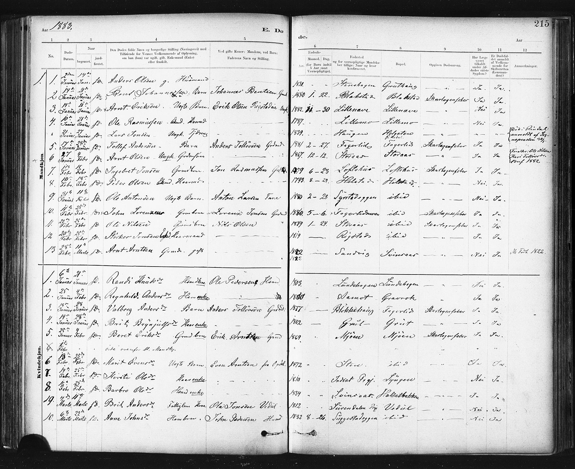 SAT, Ministerialprotokoller, klokkerbøker og fødselsregistre - Sør-Trøndelag, 672/L0857: Ministerialbok nr. 672A09, 1882-1893, s. 215