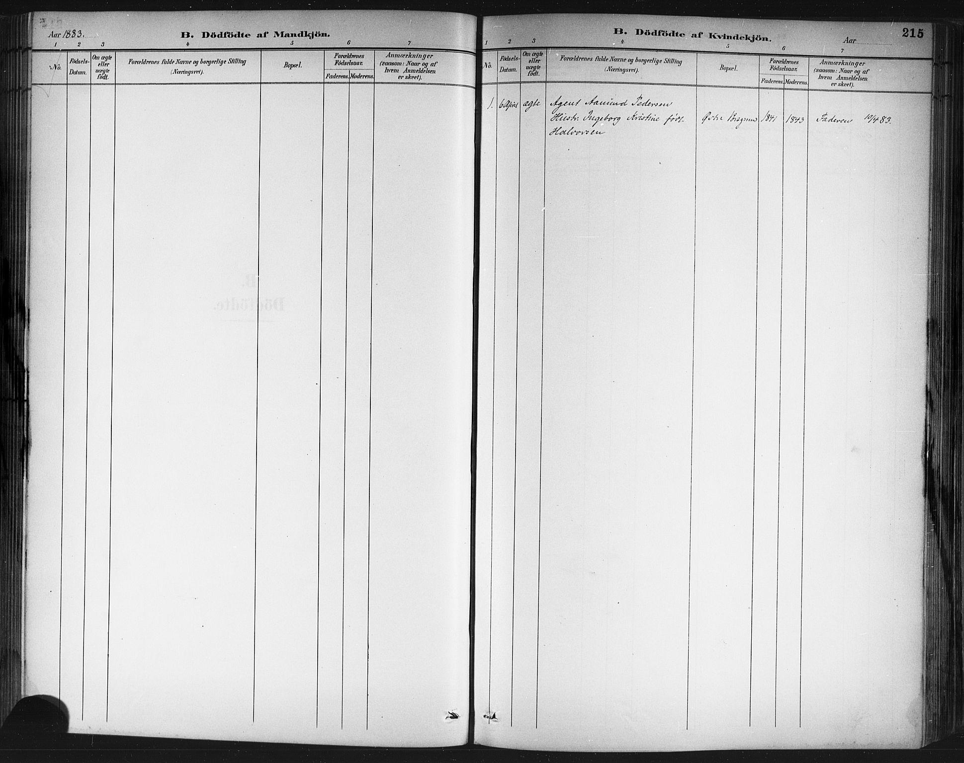 SAKO, Porsgrunn kirkebøker , G/Gb/L0005: Klokkerbok nr. II 5, 1883-1915, s. 215