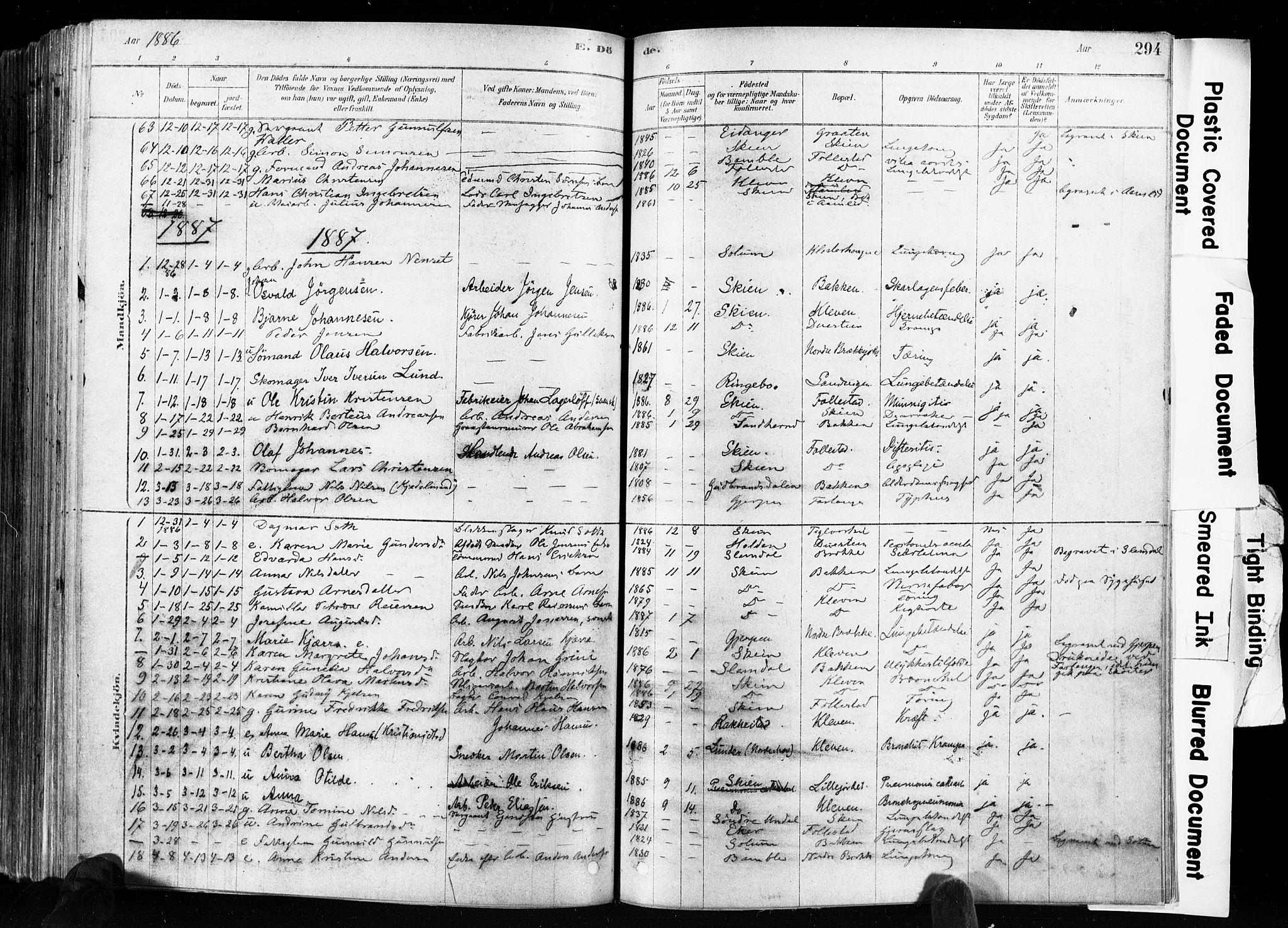SAKO, Skien kirkebøker, F/Fa/L0009: Ministerialbok nr. 9, 1878-1890, s. 294
