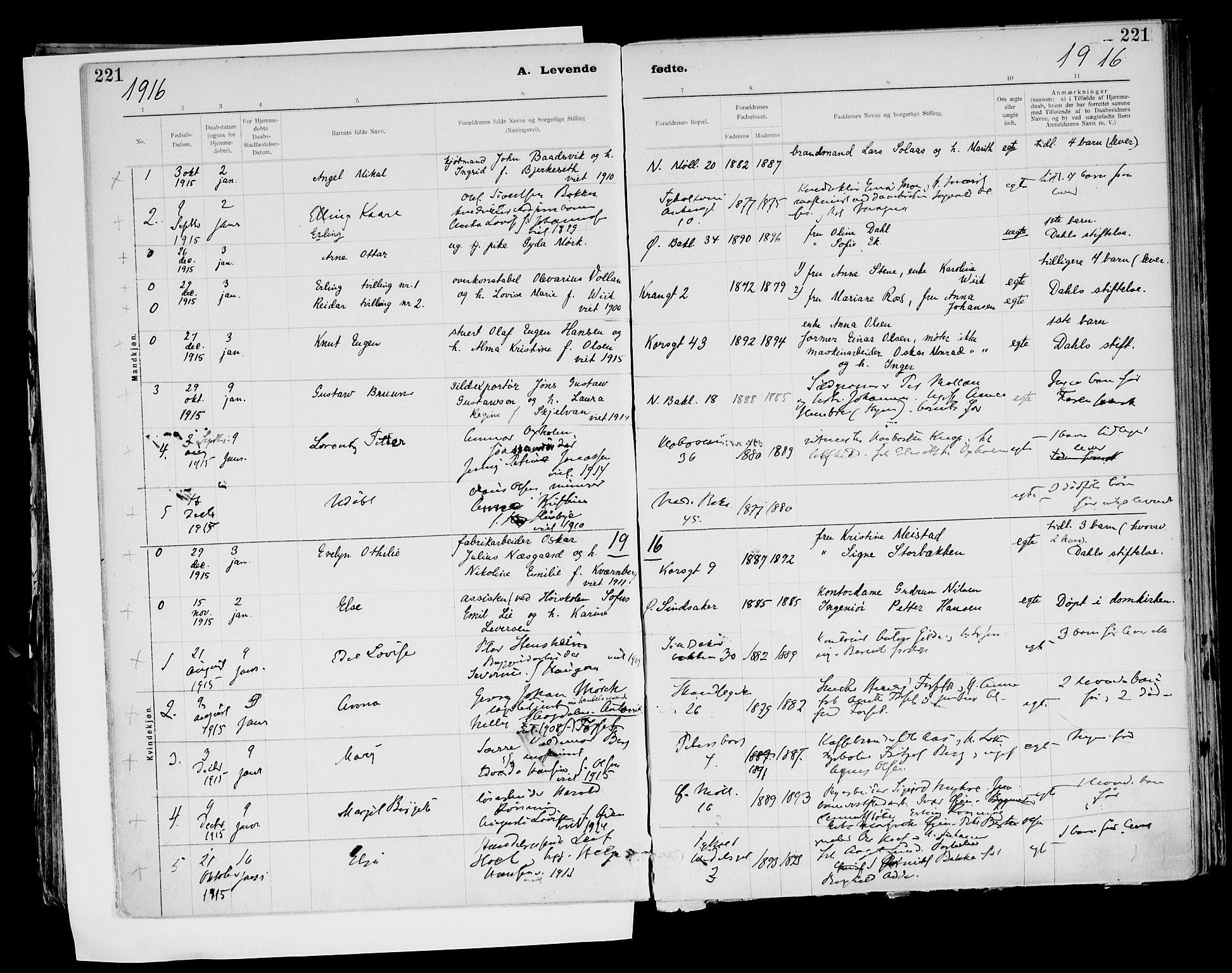 SAT, Ministerialprotokoller, klokkerbøker og fødselsregistre - Sør-Trøndelag, 604/L0203: Ministerialbok nr. 604A23, 1908-1916, s. 221