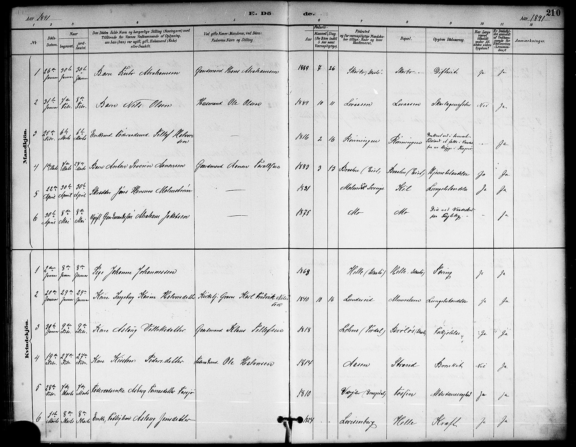 SAKO, Sannidal kirkebøker, G/Ga/L0003: Klokkerbok nr. 3, 1887-1922, s. 210