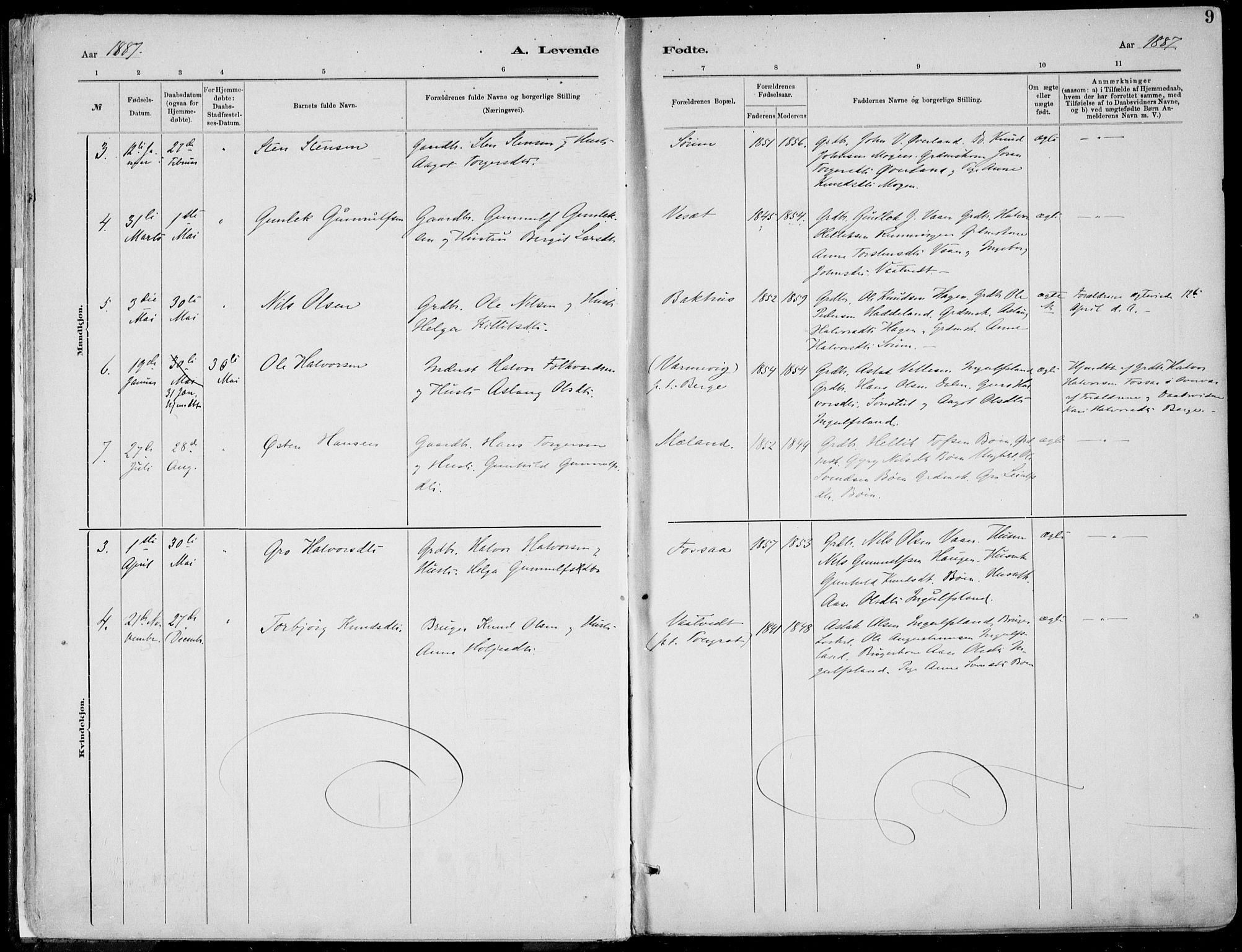 SAKO, Rjukan kirkebøker, F/Fa/L0001: Ministerialbok nr. 1, 1878-1912, s. 9