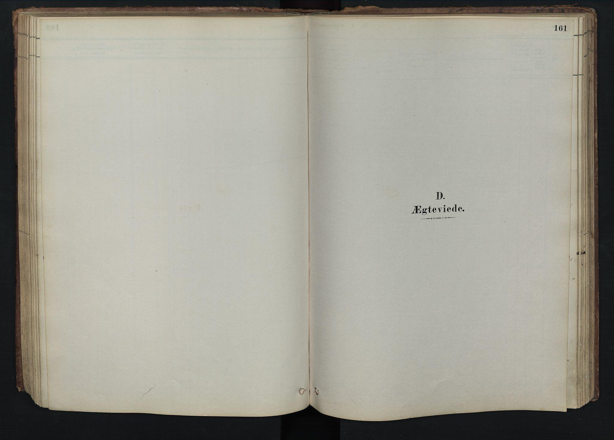 SAH, Rendalen prestekontor, H/Ha/Hab/L0009: Klokkerbok nr. 9, 1879-1902, s. 161