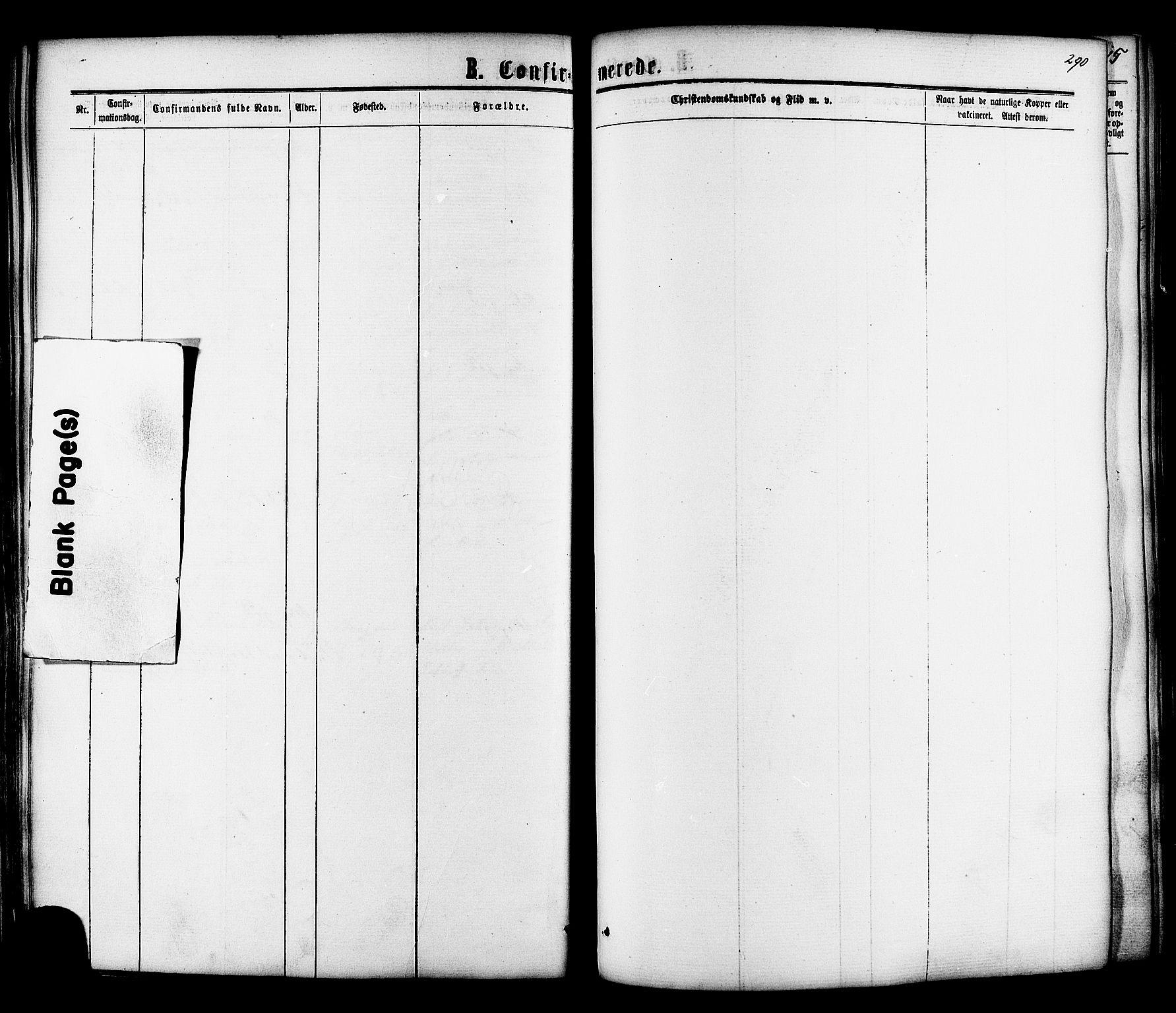 SAT, Ministerialprotokoller, klokkerbøker og fødselsregistre - Sør-Trøndelag, 606/L0293: Ministerialbok nr. 606A08, 1866-1877, s. 290