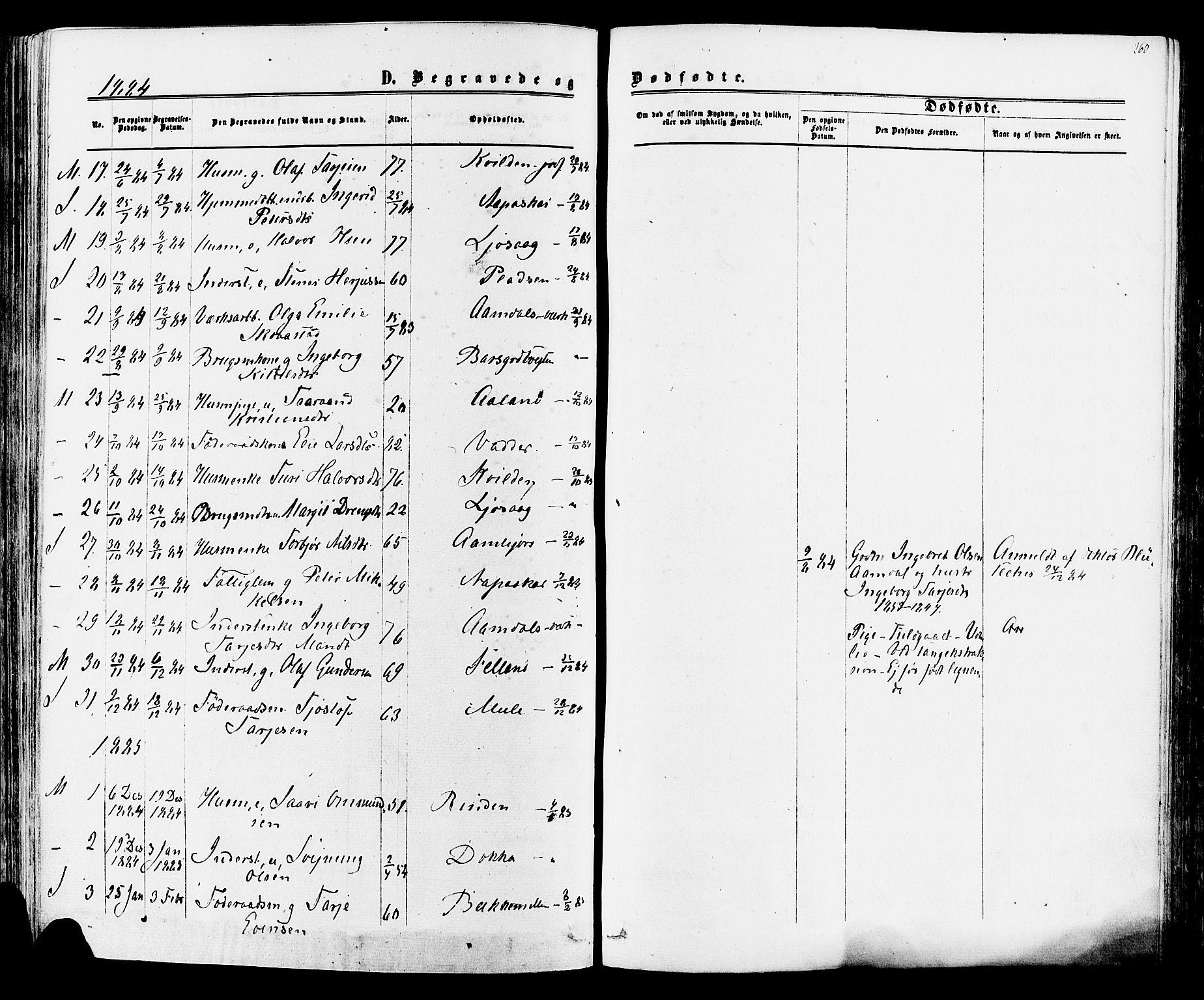 SAKO, Mo kirkebøker, F/Fa/L0006: Ministerialbok nr. I 6, 1865-1885, s. 260