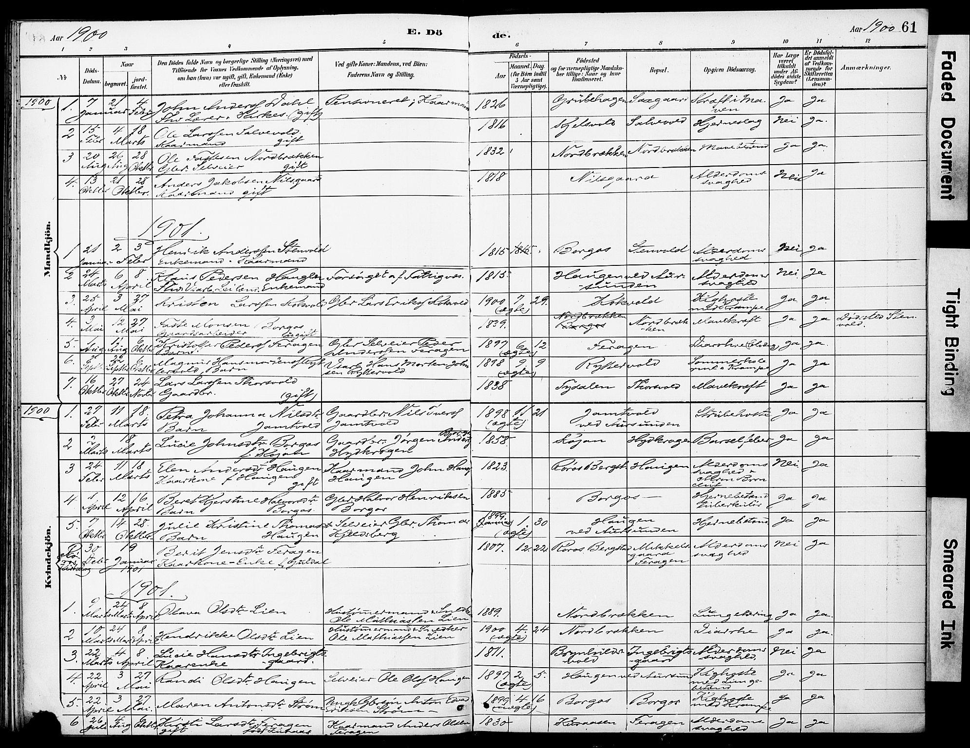 SAT, Ministerialprotokoller, klokkerbøker og fødselsregistre - Sør-Trøndelag, 683/L0948: Ministerialbok nr. 683A01, 1891-1902, s. 61