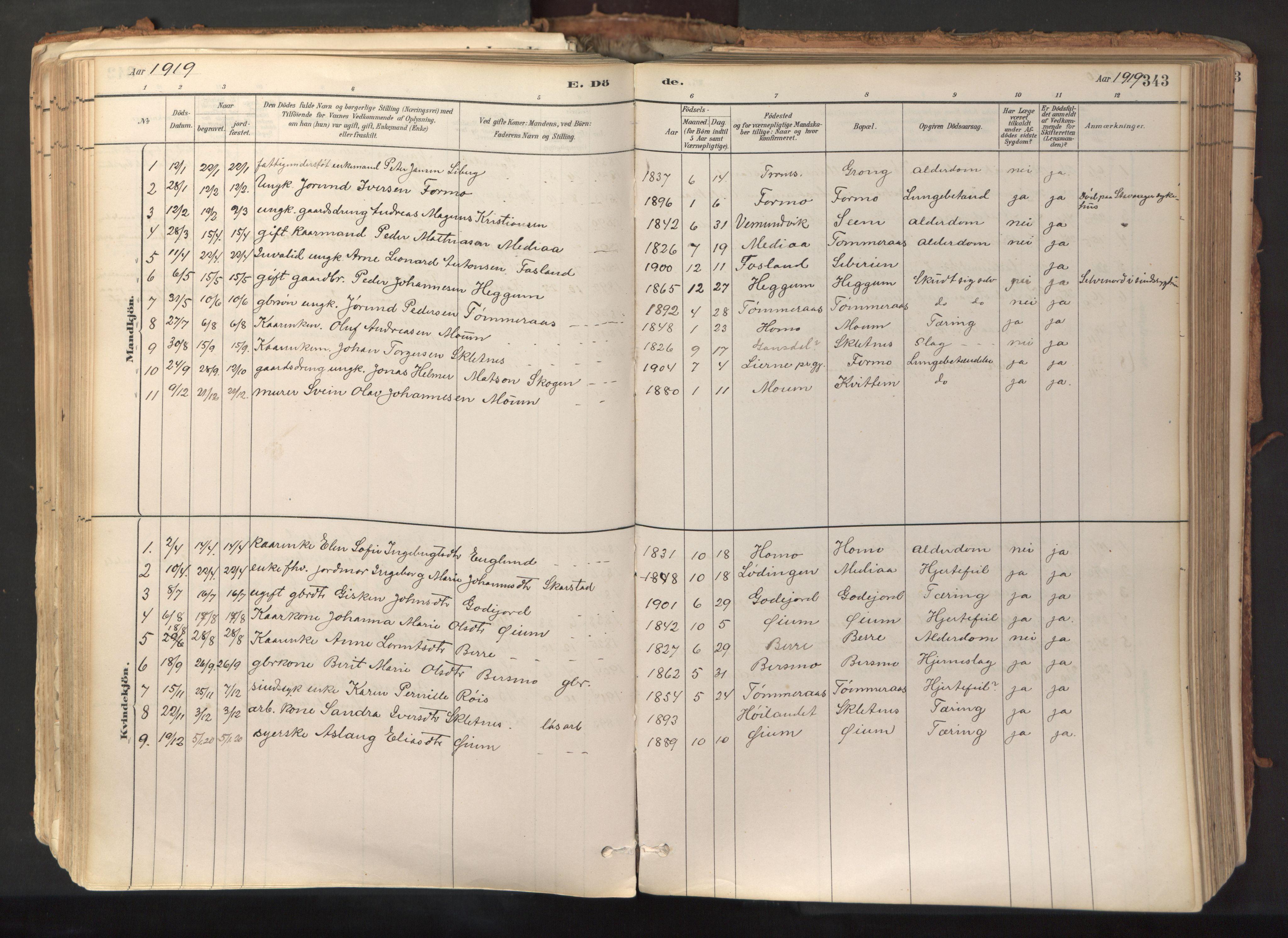 SAT, Ministerialprotokoller, klokkerbøker og fødselsregistre - Nord-Trøndelag, 758/L0519: Ministerialbok nr. 758A04, 1880-1926, s. 343