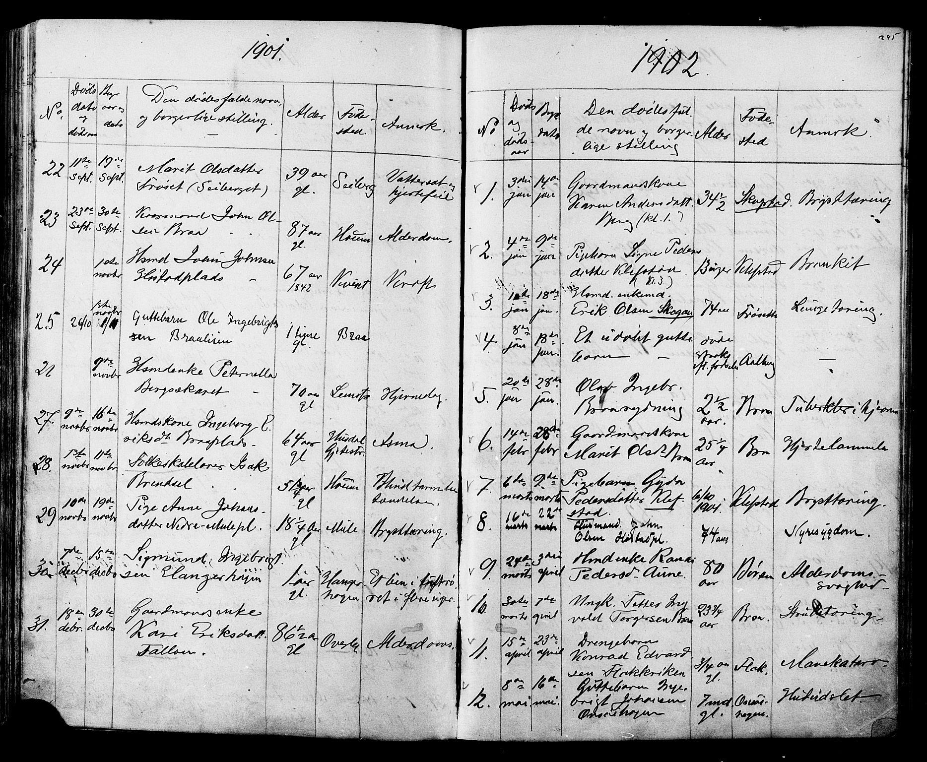 SAT, Ministerialprotokoller, klokkerbøker og fødselsregistre - Sør-Trøndelag, 612/L0387: Klokkerbok nr. 612C03, 1874-1908, s. 245