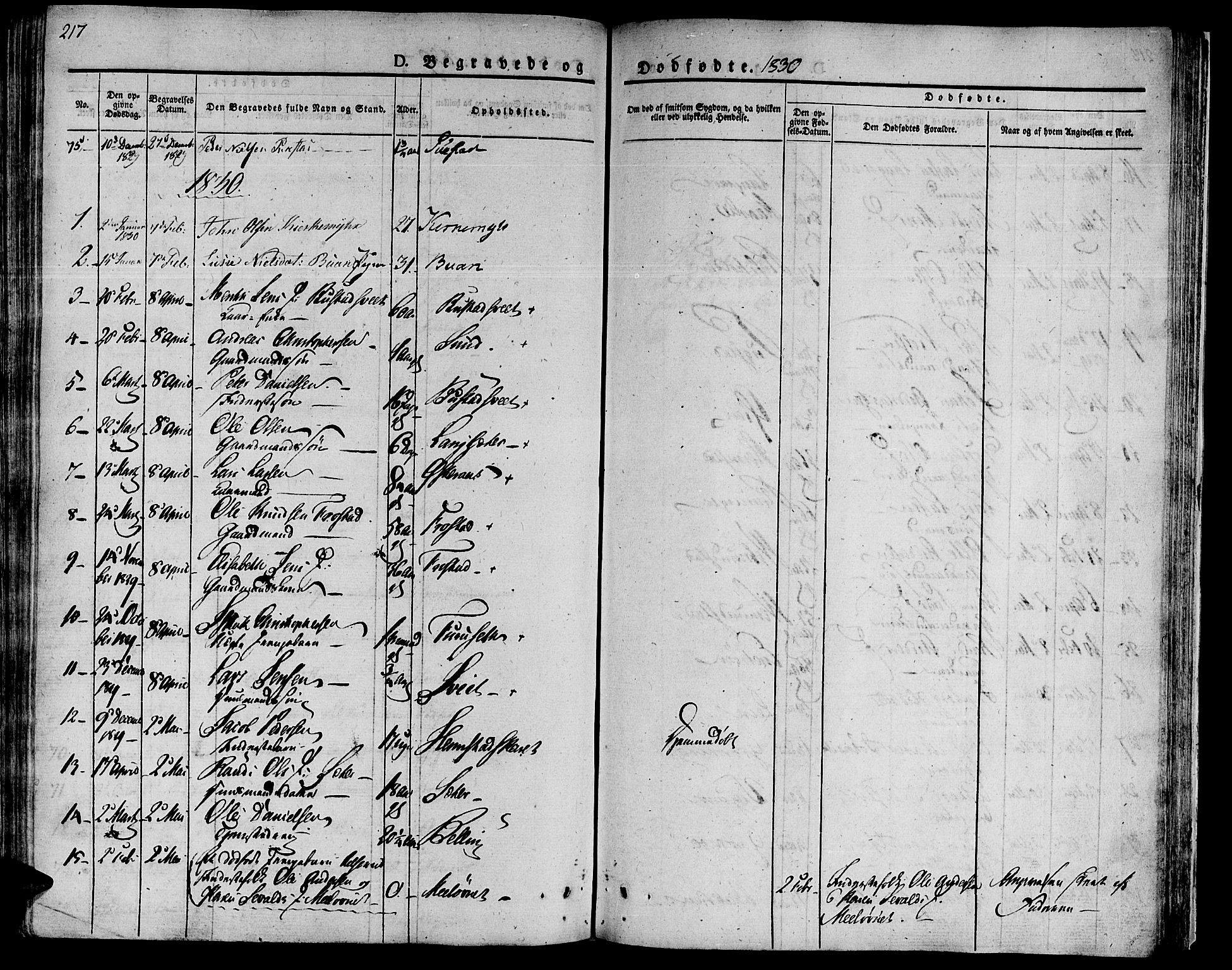 SAT, Ministerialprotokoller, klokkerbøker og fødselsregistre - Sør-Trøndelag, 646/L0609: Ministerialbok nr. 646A07, 1826-1838, s. 217