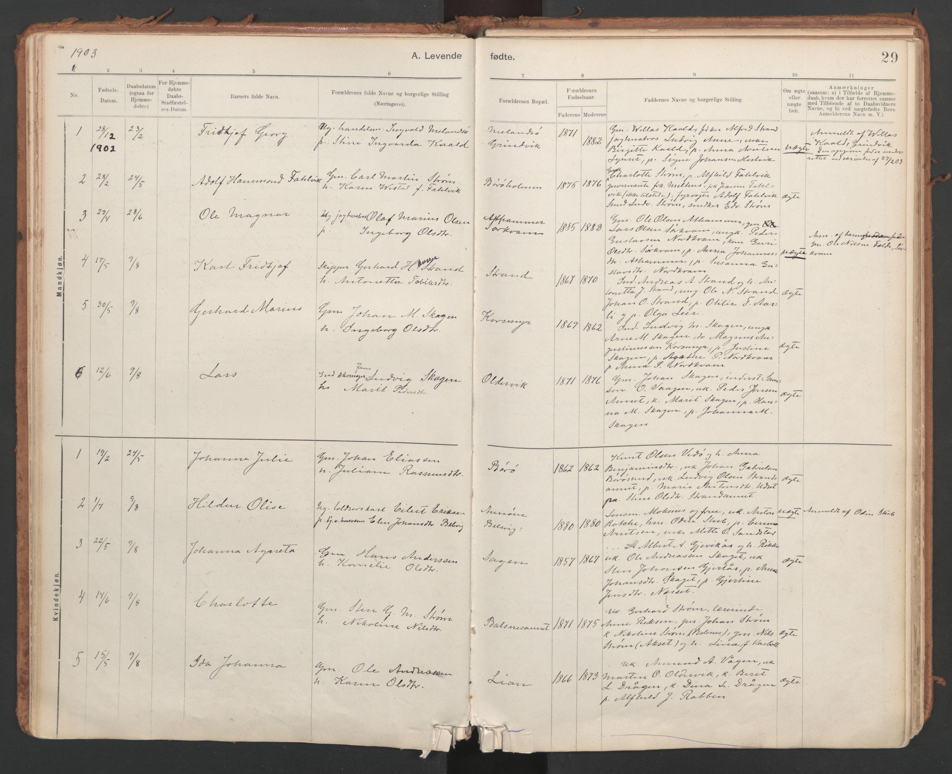 SAT, Ministerialprotokoller, klokkerbøker og fødselsregistre - Sør-Trøndelag, 639/L0572: Ministerialbok nr. 639A01, 1890-1920, s. 29