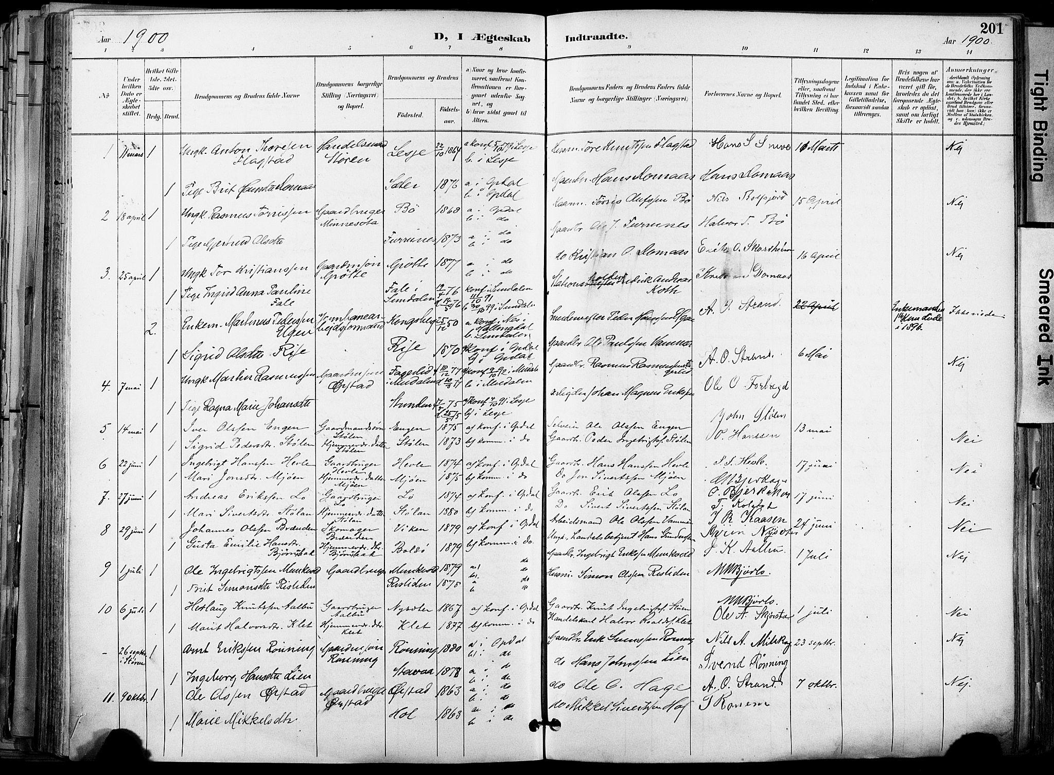 SAT, Ministerialprotokoller, klokkerbøker og fødselsregistre - Sør-Trøndelag, 678/L0902: Ministerialbok nr. 678A11, 1895-1911, s. 201