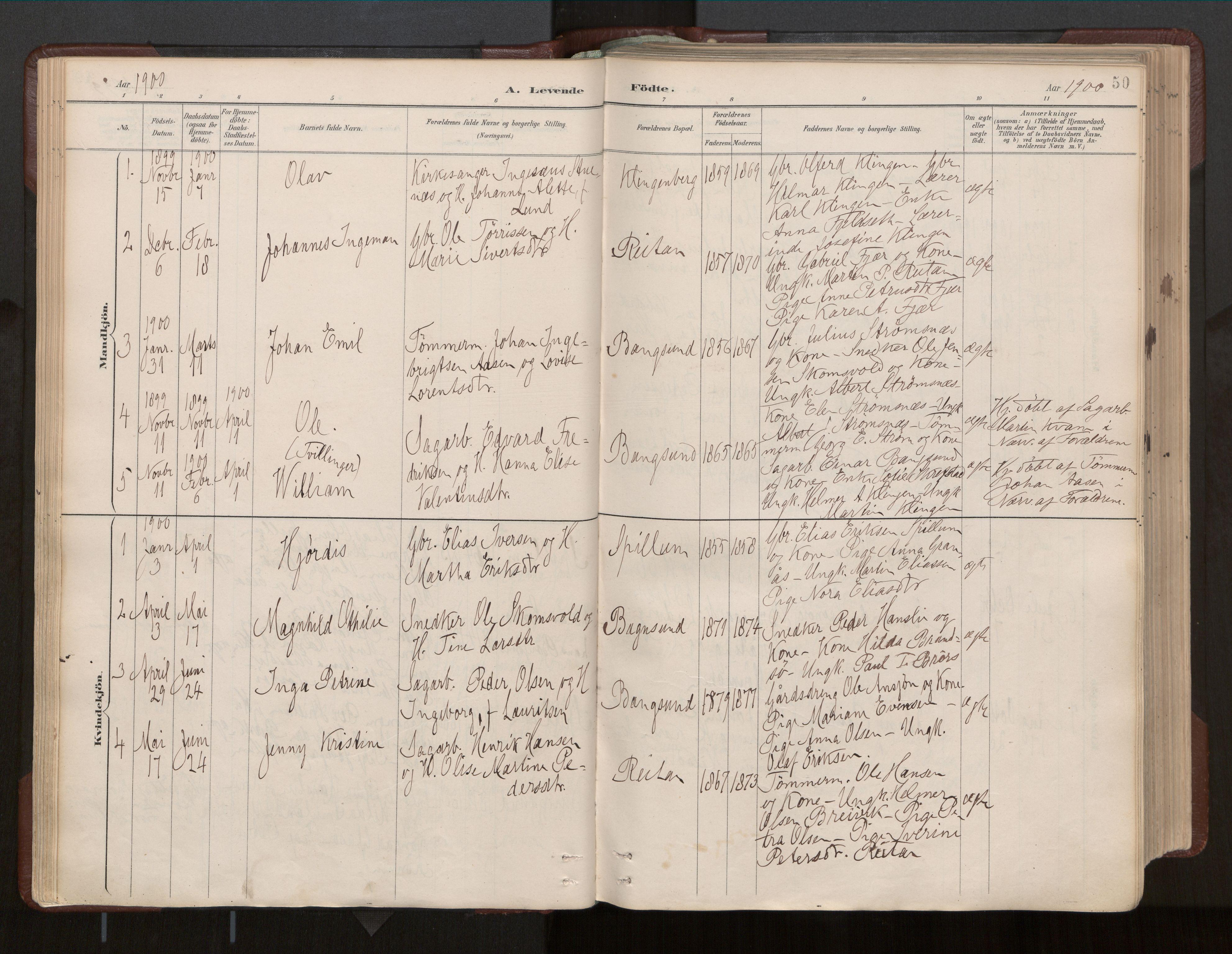 SAT, Ministerialprotokoller, klokkerbøker og fødselsregistre - Nord-Trøndelag, 770/L0589: Ministerialbok nr. 770A03, 1887-1929, s. 50