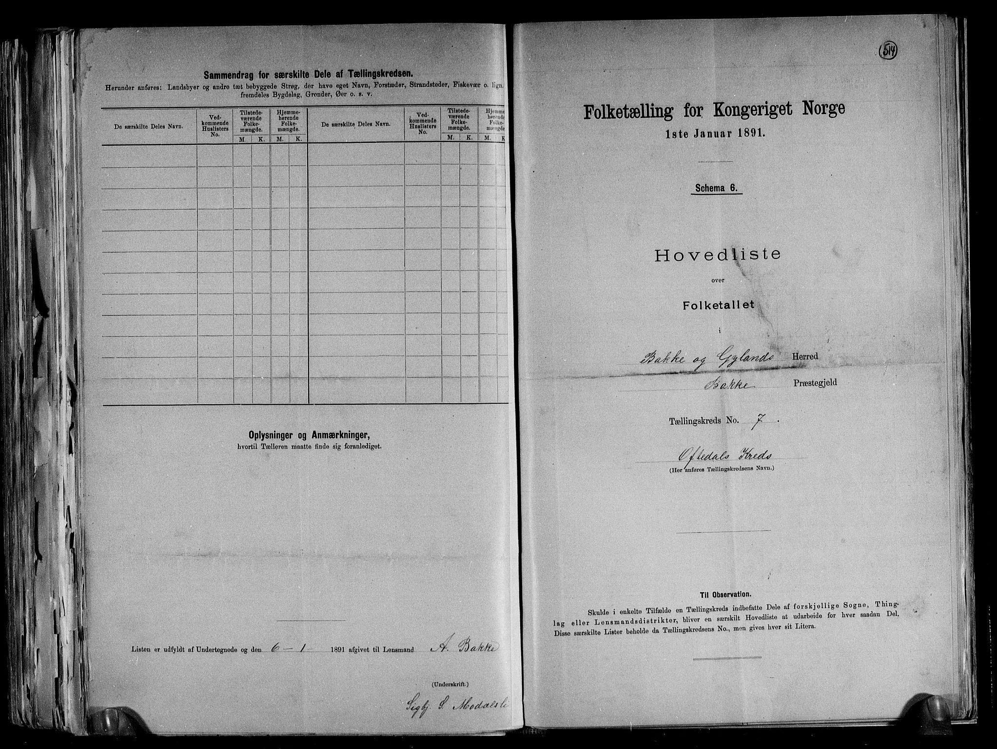 RA, Folketelling 1891 for 1045 Bakke herred, 1891, s. 17