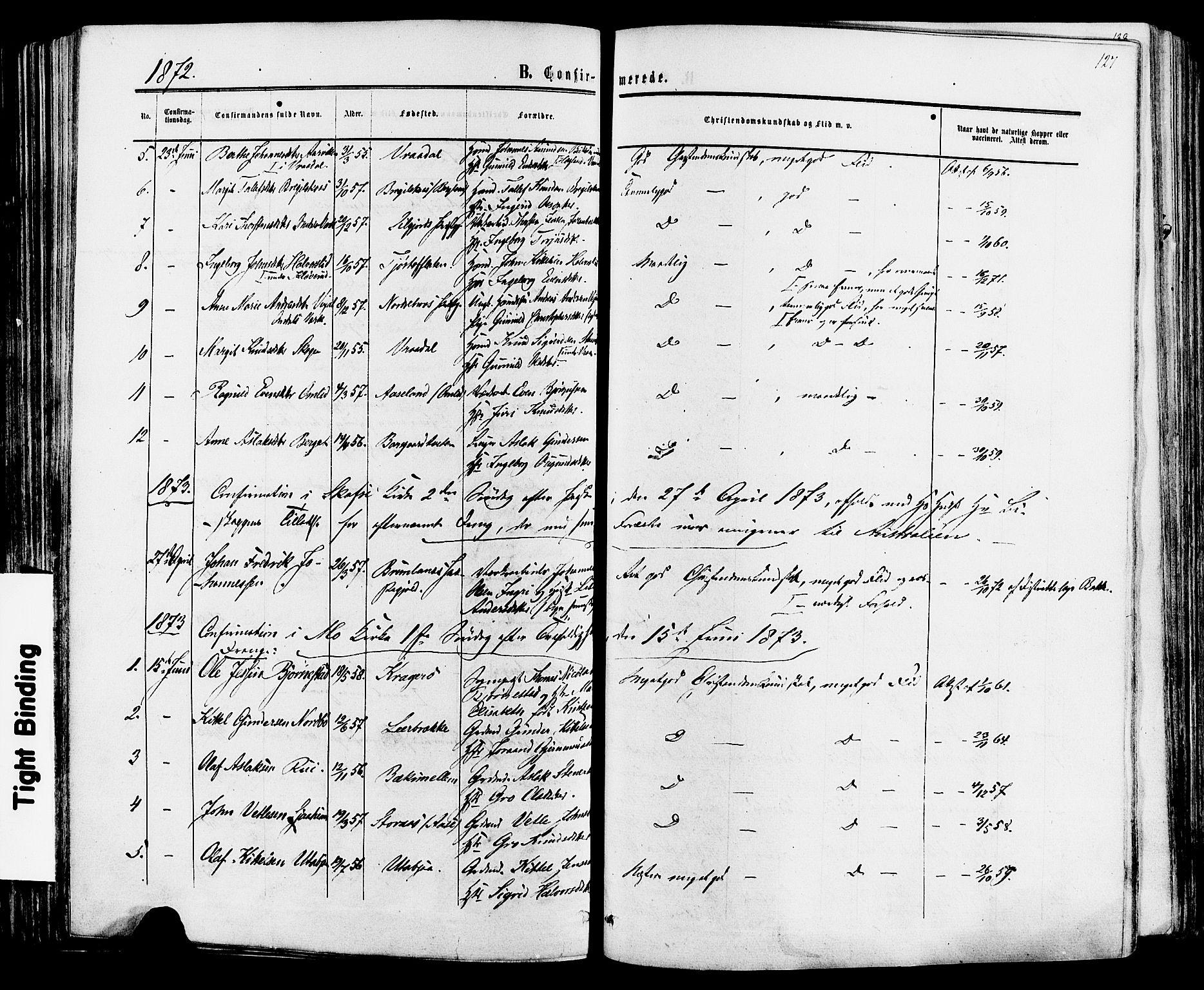 SAKO, Mo kirkebøker, F/Fa/L0006: Ministerialbok nr. I 6, 1865-1885, s. 127