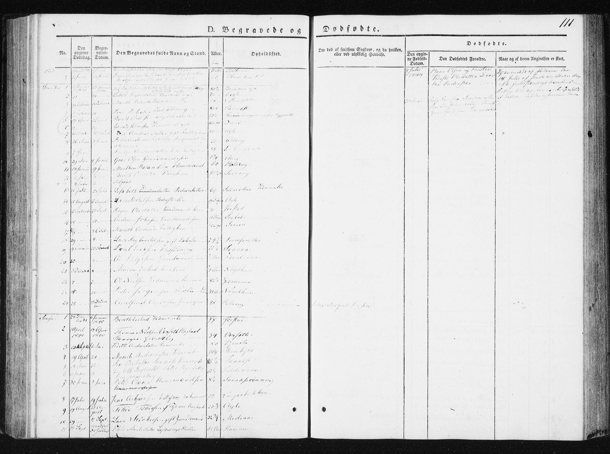 SAT, Ministerialprotokoller, klokkerbøker og fødselsregistre - Nord-Trøndelag, 749/L0470: Ministerialbok nr. 749A04, 1834-1853, s. 111