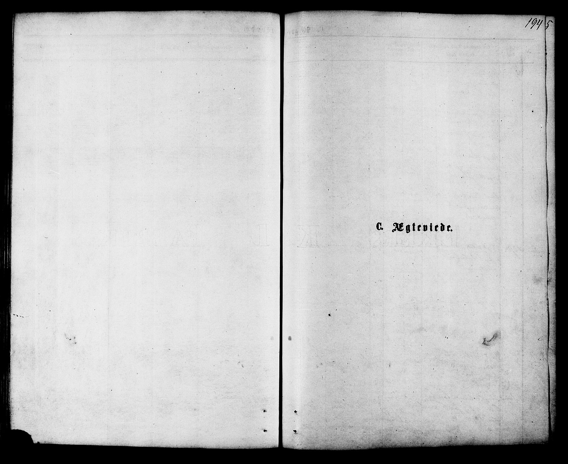 SAT, Ministerialprotokoller, klokkerbøker og fødselsregistre - Nordland, 853/L0771: Ministerialbok nr. 853A10, 1870-1881, s. 194
