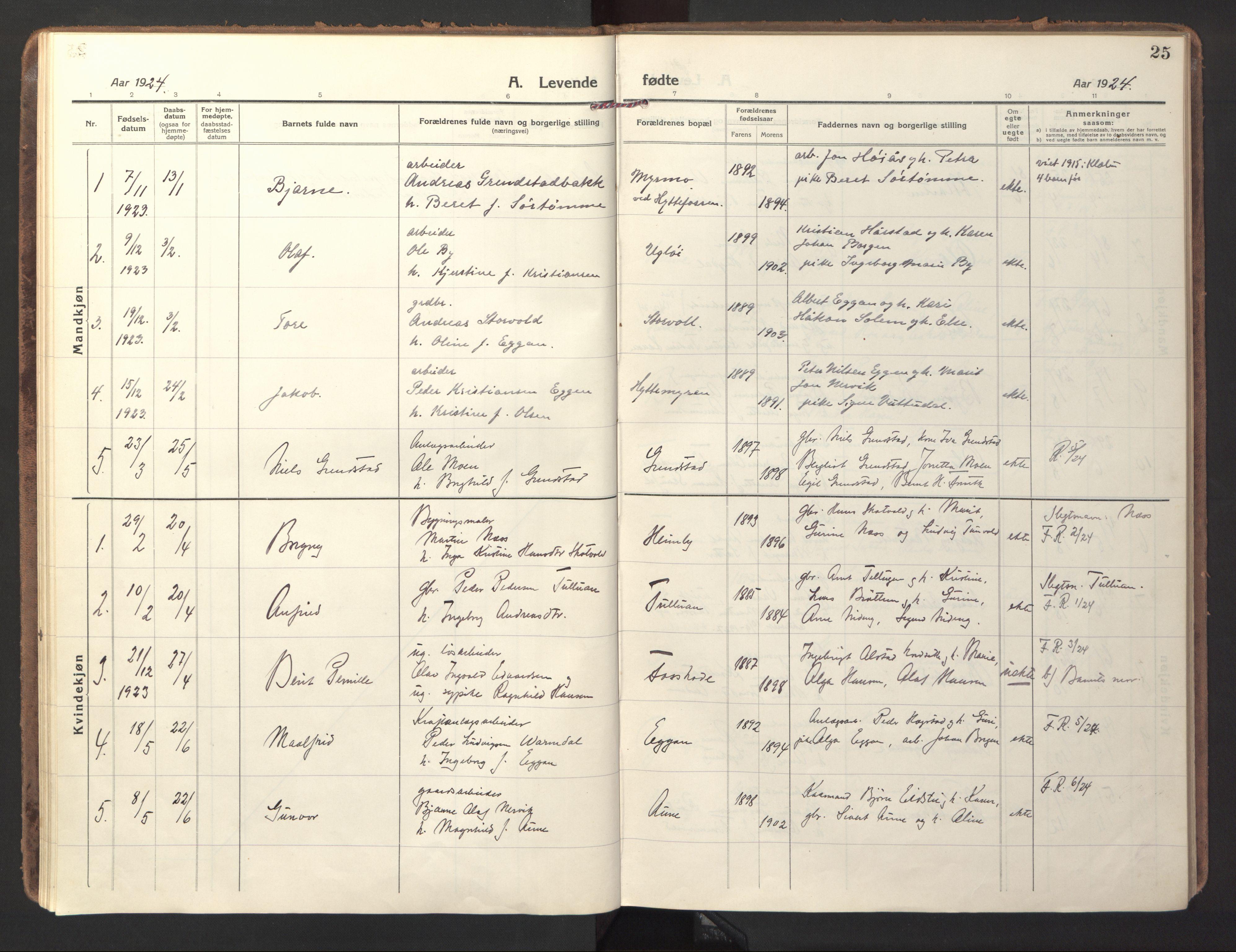 SAT, Ministerialprotokoller, klokkerbøker og fødselsregistre - Sør-Trøndelag, 618/L0449: Ministerialbok nr. 618A12, 1917-1924, s. 25