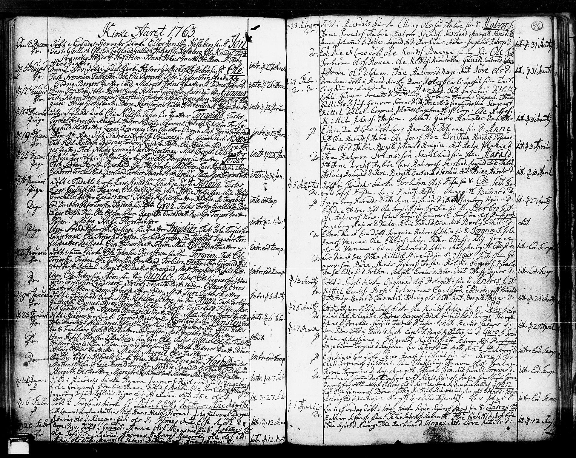 SAKO, Hjartdal kirkebøker, F/Fa/L0003: Ministerialbok nr. I 3, 1727-1775, s. 96