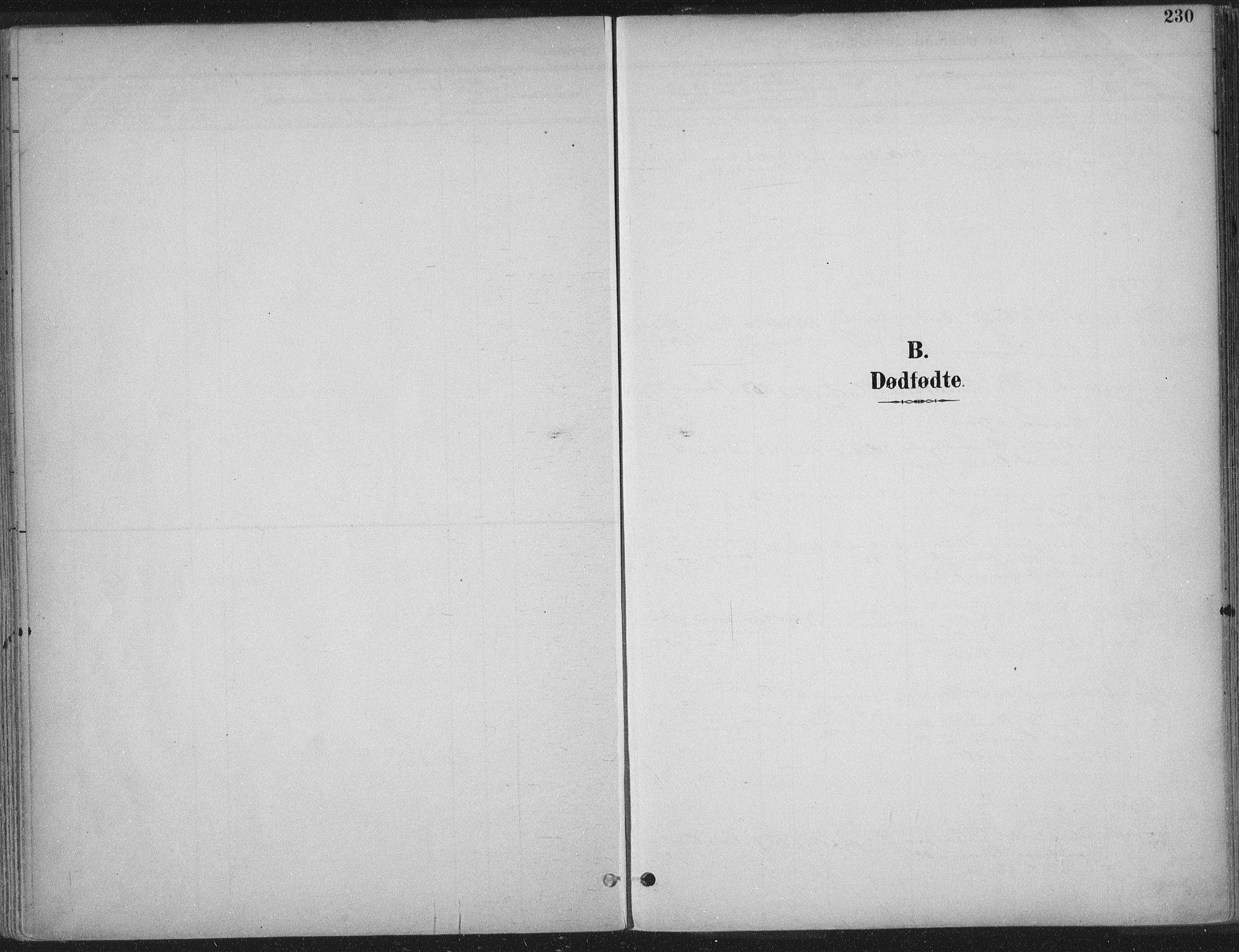 SAT, Ministerialprotokoller, klokkerbøker og fødselsregistre - Sør-Trøndelag, 601/L0062: Ministerialbok nr. 601A30, 1891-1911, s. 230