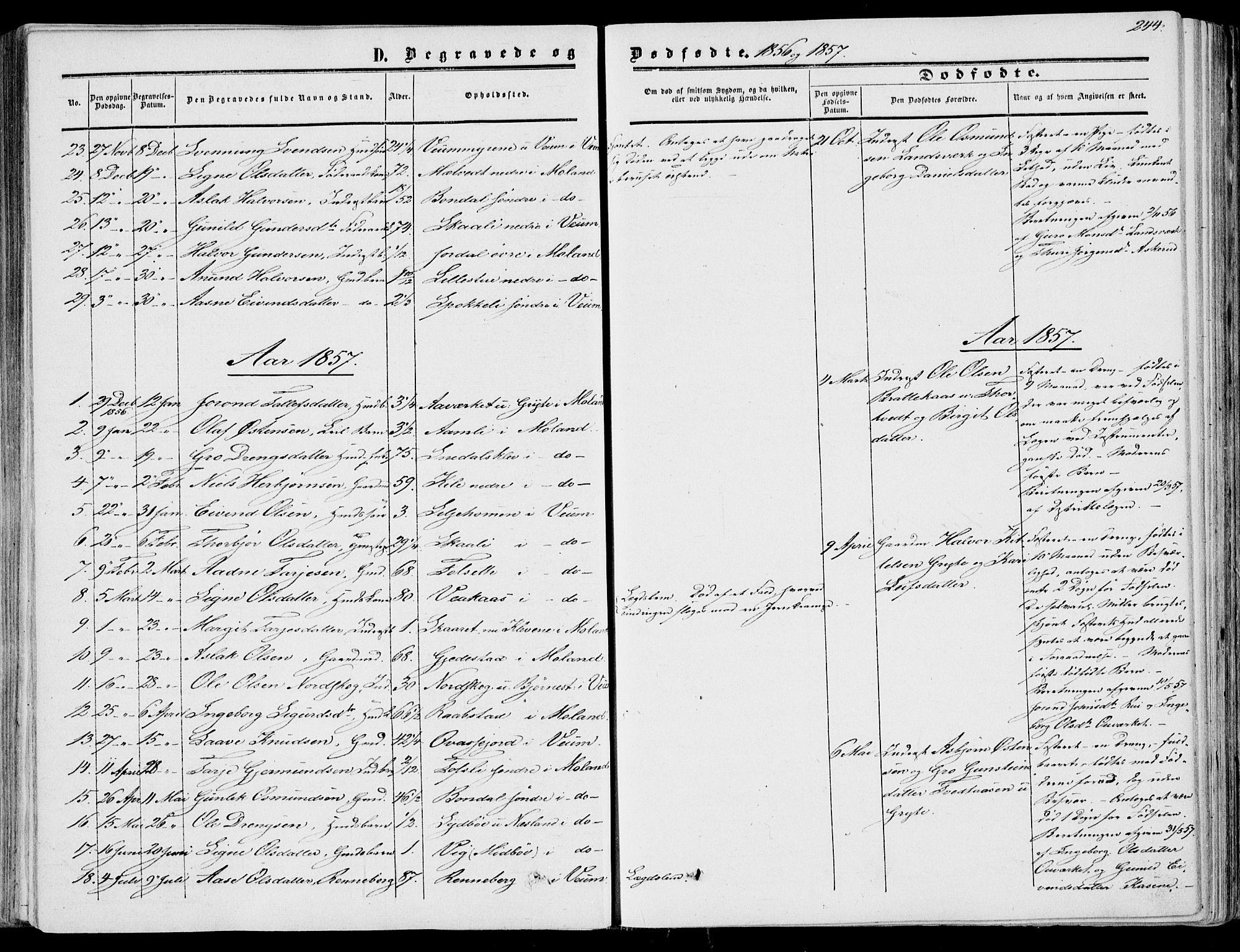 SAKO, Fyresdal kirkebøker, F/Fa/L0005: Ministerialbok nr. I 5, 1855-1871, s. 244