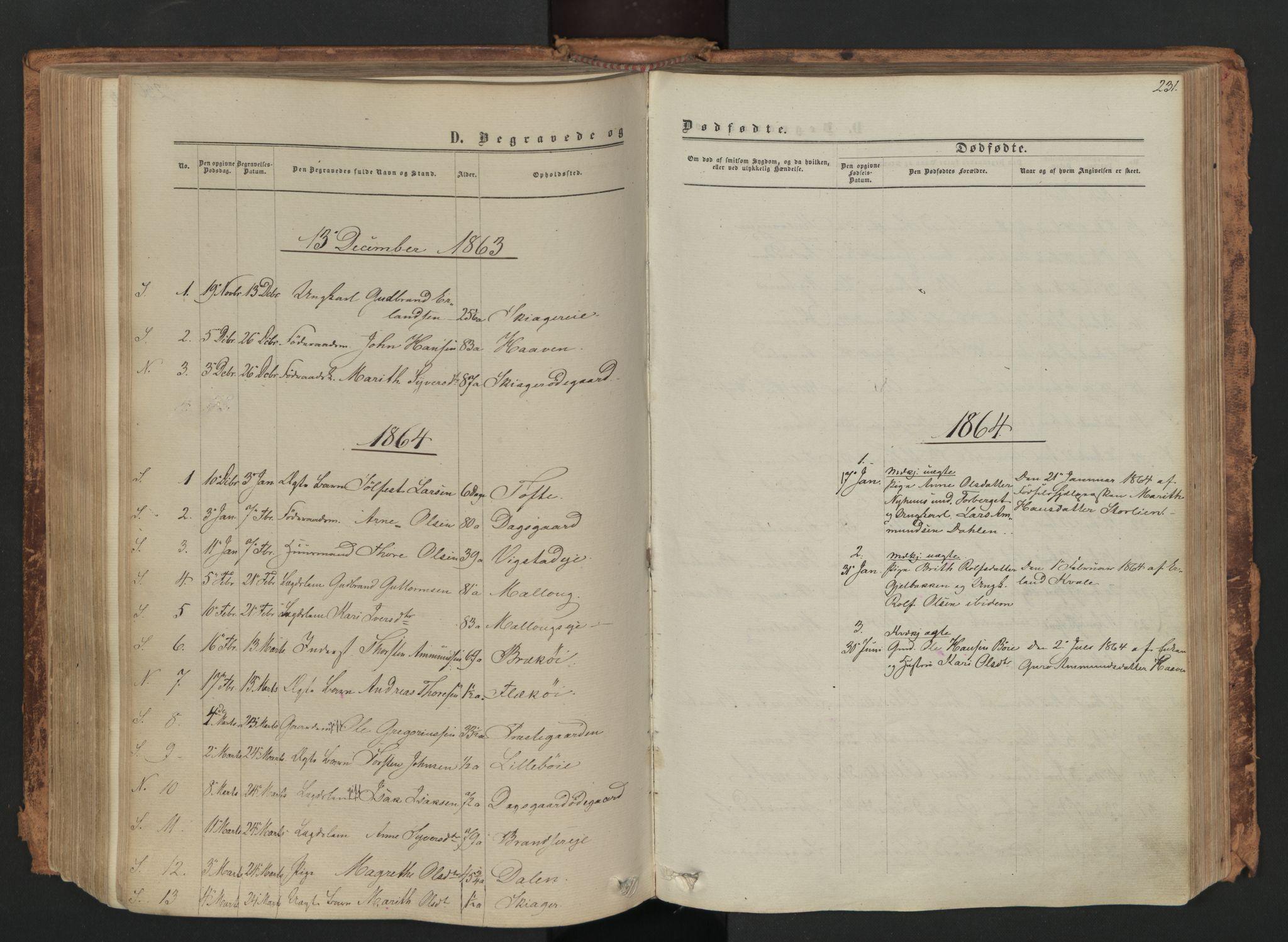 SAH, Skjåk prestekontor, Ministerialbok nr. 1, 1863-1879, s. 231