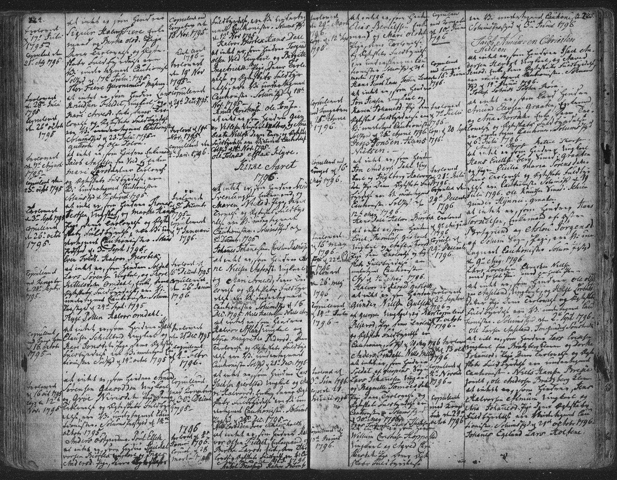 SAKO, Solum kirkebøker, F/Fa/L0003: Ministerialbok nr. I 3, 1761-1814, s. 224-225