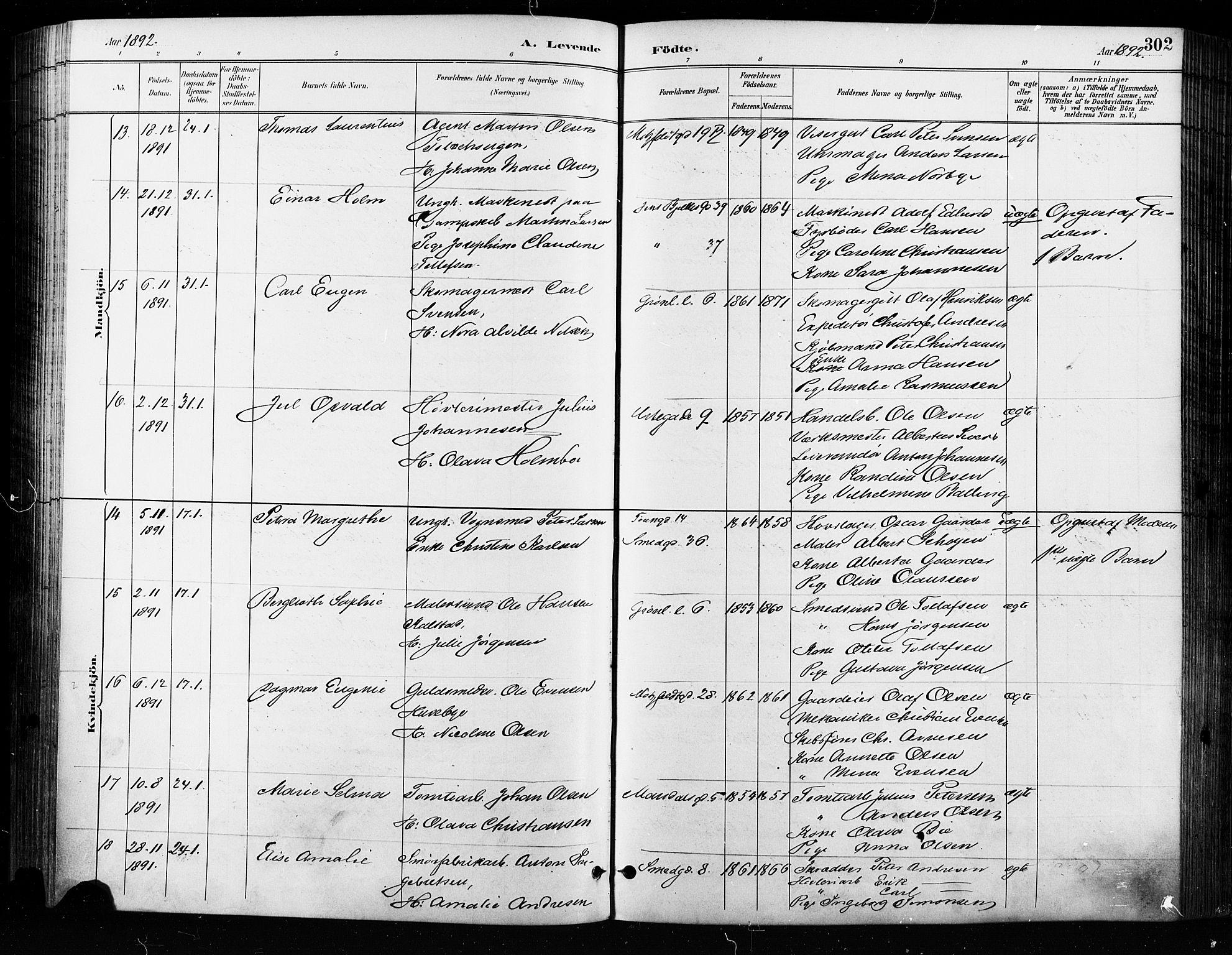 SAO, Grønland prestekontor Kirkebøker, F/Fa/L0009: Ministerialbok nr. 9, 1888-1893, s. 302