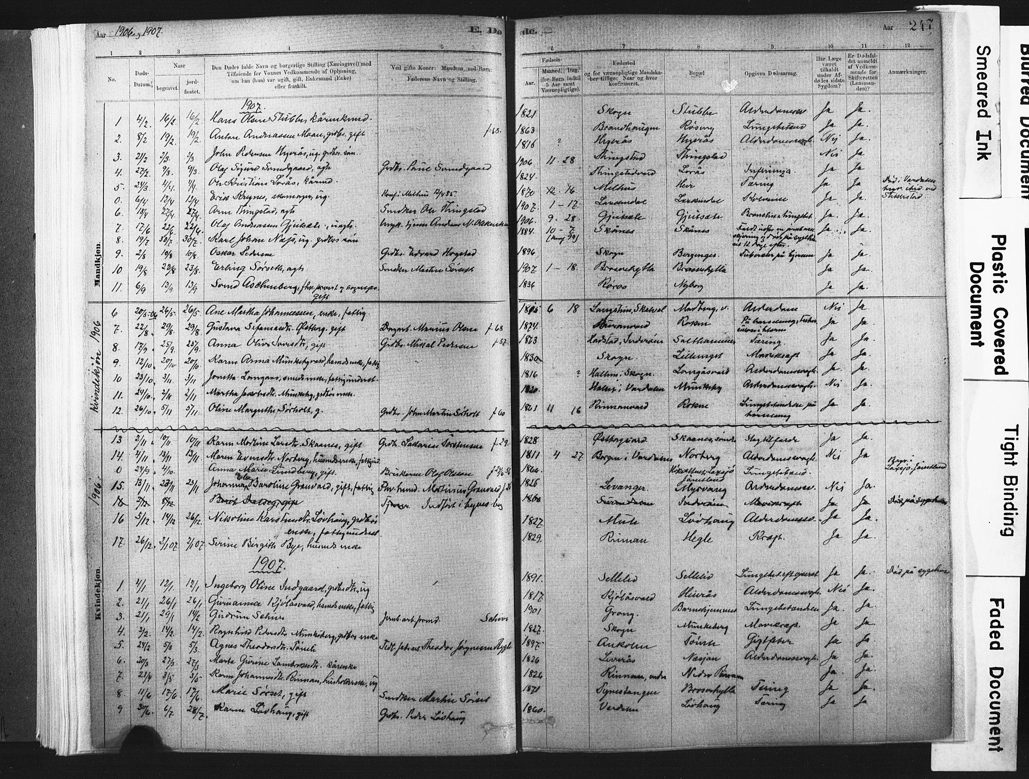 SAT, Ministerialprotokoller, klokkerbøker og fødselsregistre - Nord-Trøndelag, 721/L0207: Ministerialbok nr. 721A02, 1880-1911, s. 247