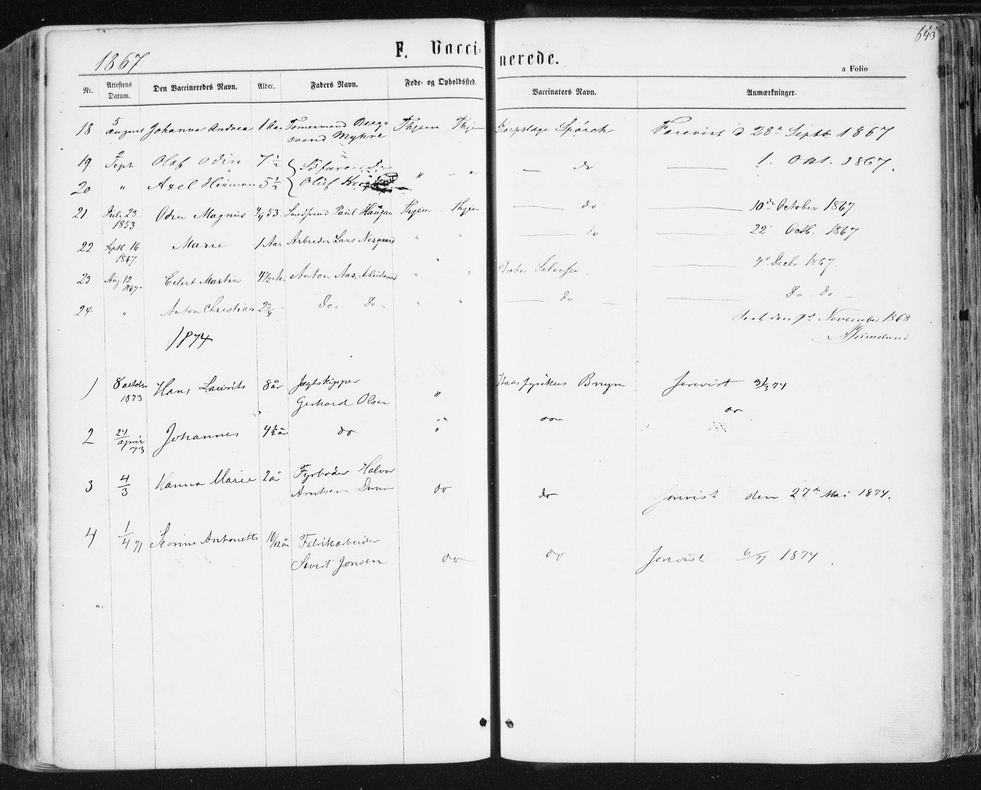 SAT, Ministerialprotokoller, klokkerbøker og fødselsregistre - Sør-Trøndelag, 604/L0186: Ministerialbok nr. 604A07, 1866-1877, s. 643