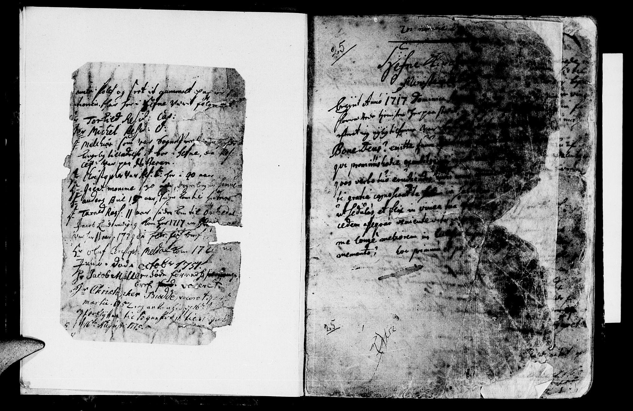 SAT, Ministerialprotokoller, klokkerbøker og fødselsregistre - Sør-Trøndelag, 630/L0488: Ministerialbok nr. 630A01, 1717-1756