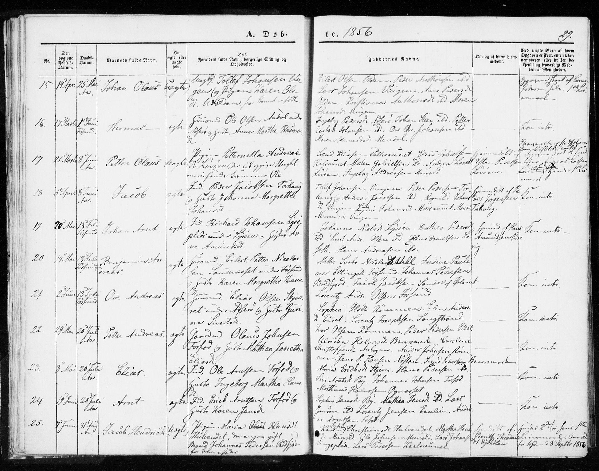 SAT, Ministerialprotokoller, klokkerbøker og fødselsregistre - Sør-Trøndelag, 655/L0677: Ministerialbok nr. 655A06, 1847-1860, s. 29