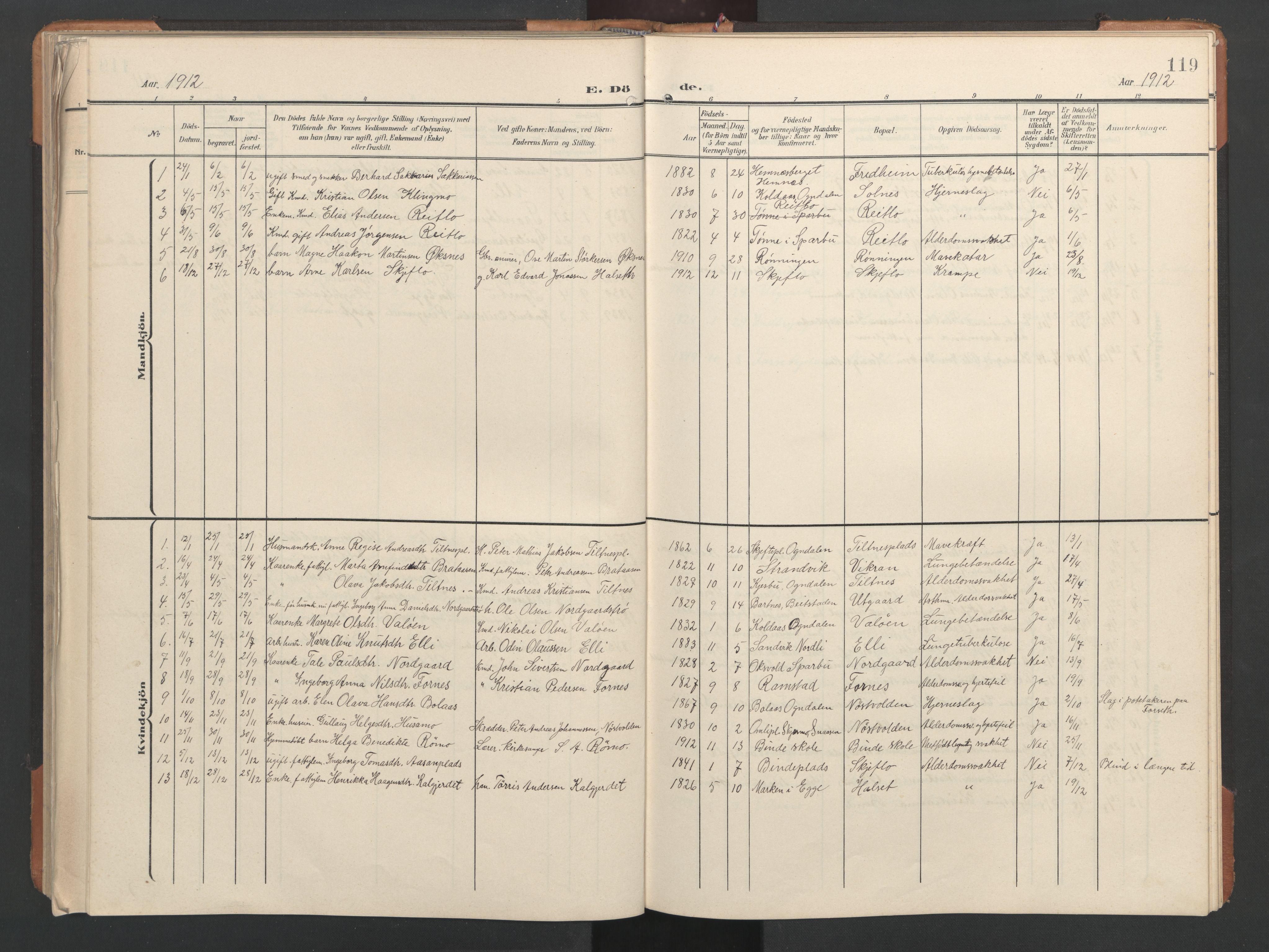 SAT, Ministerialprotokoller, klokkerbøker og fødselsregistre - Nord-Trøndelag, 746/L0455: Klokkerbok nr. 746C01, 1908-1933, s. 119