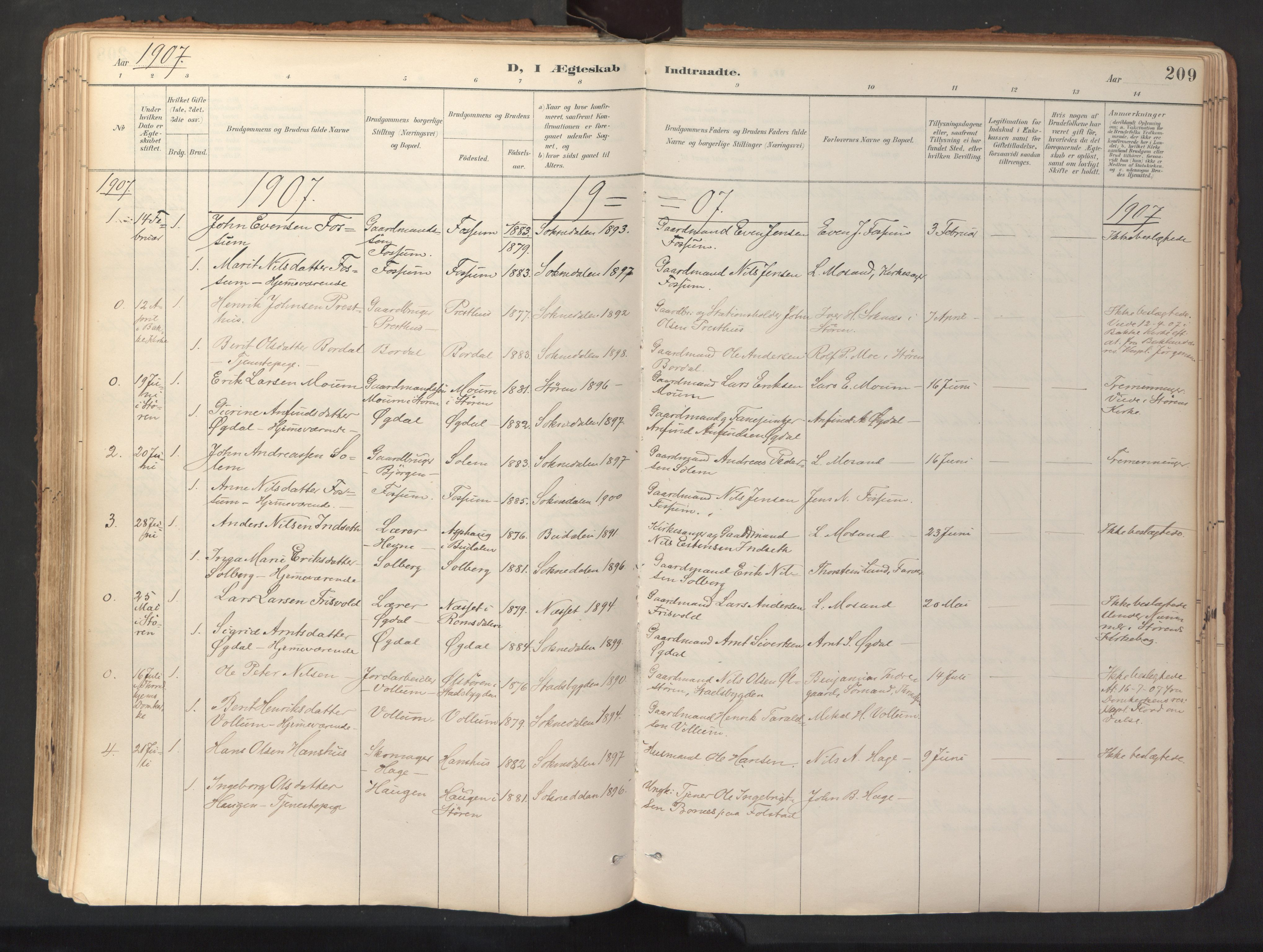 SAT, Ministerialprotokoller, klokkerbøker og fødselsregistre - Sør-Trøndelag, 689/L1041: Ministerialbok nr. 689A06, 1891-1923, s. 209