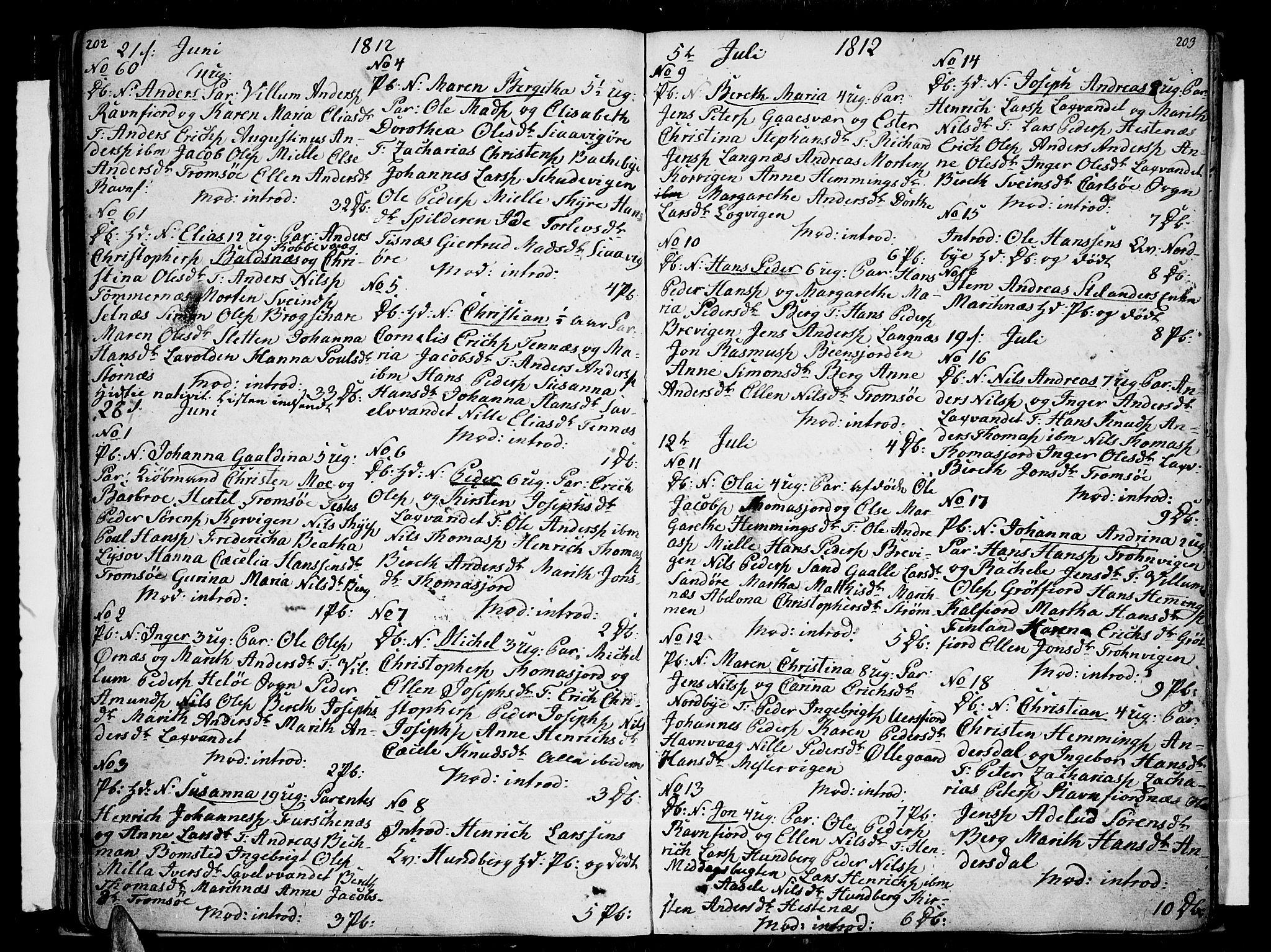 SATØ, Tromsø sokneprestkontor/stiftsprosti/domprosti, G/Ga/L0006kirke: Ministerialbok nr. 6, 1806-1821, s. 202-203
