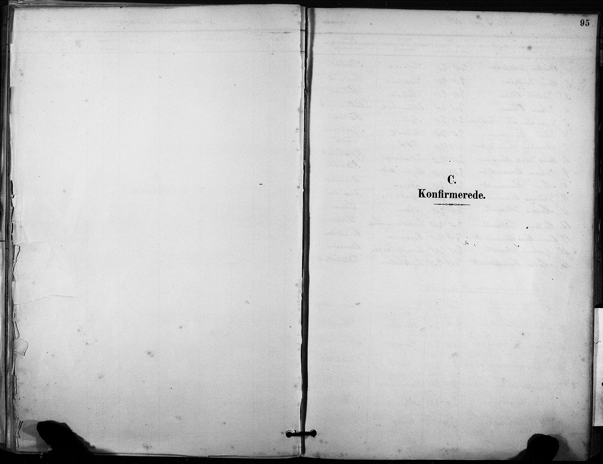 SAT, Ministerialprotokoller, klokkerbøker og fødselsregistre - Sør-Trøndelag, 633/L0518: Ministerialbok nr. 633A01, 1884-1906, s. 95