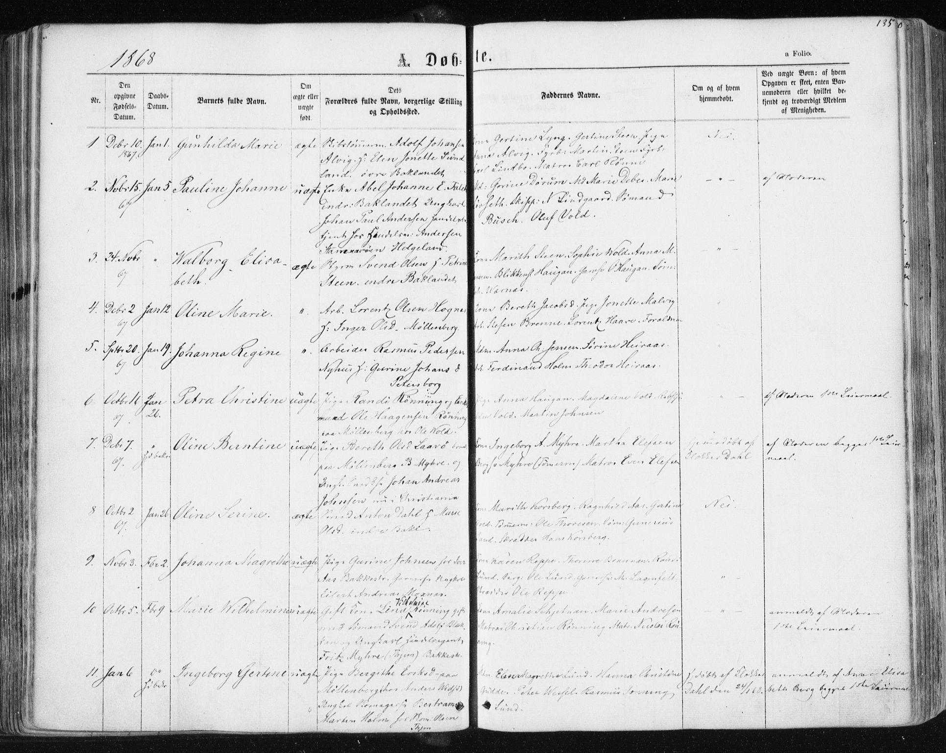 SAT, Ministerialprotokoller, klokkerbøker og fødselsregistre - Sør-Trøndelag, 604/L0186: Ministerialbok nr. 604A07, 1866-1877, s. 135