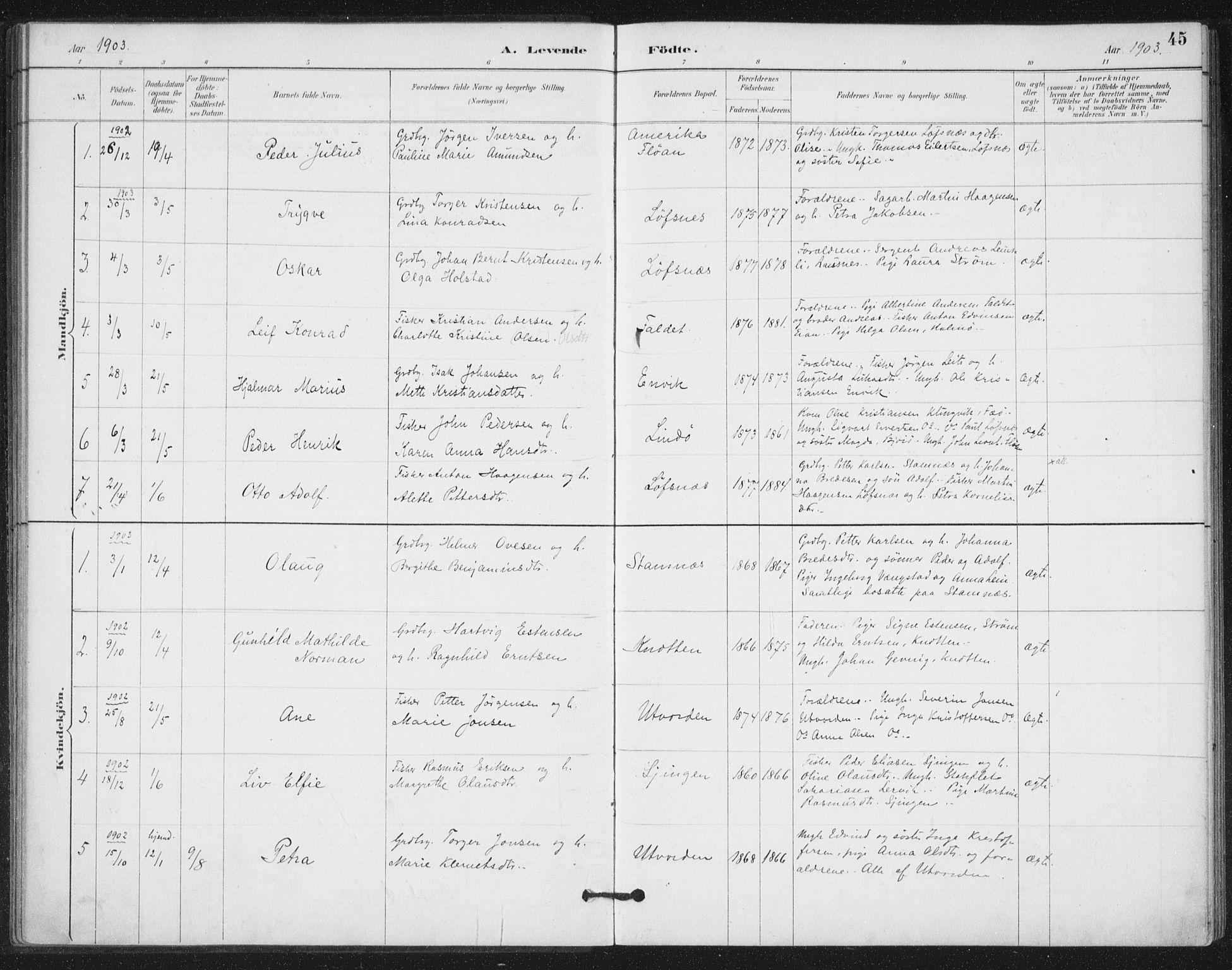 SAT, Ministerialprotokoller, klokkerbøker og fødselsregistre - Nord-Trøndelag, 772/L0603: Ministerialbok nr. 772A01, 1885-1912, s. 45