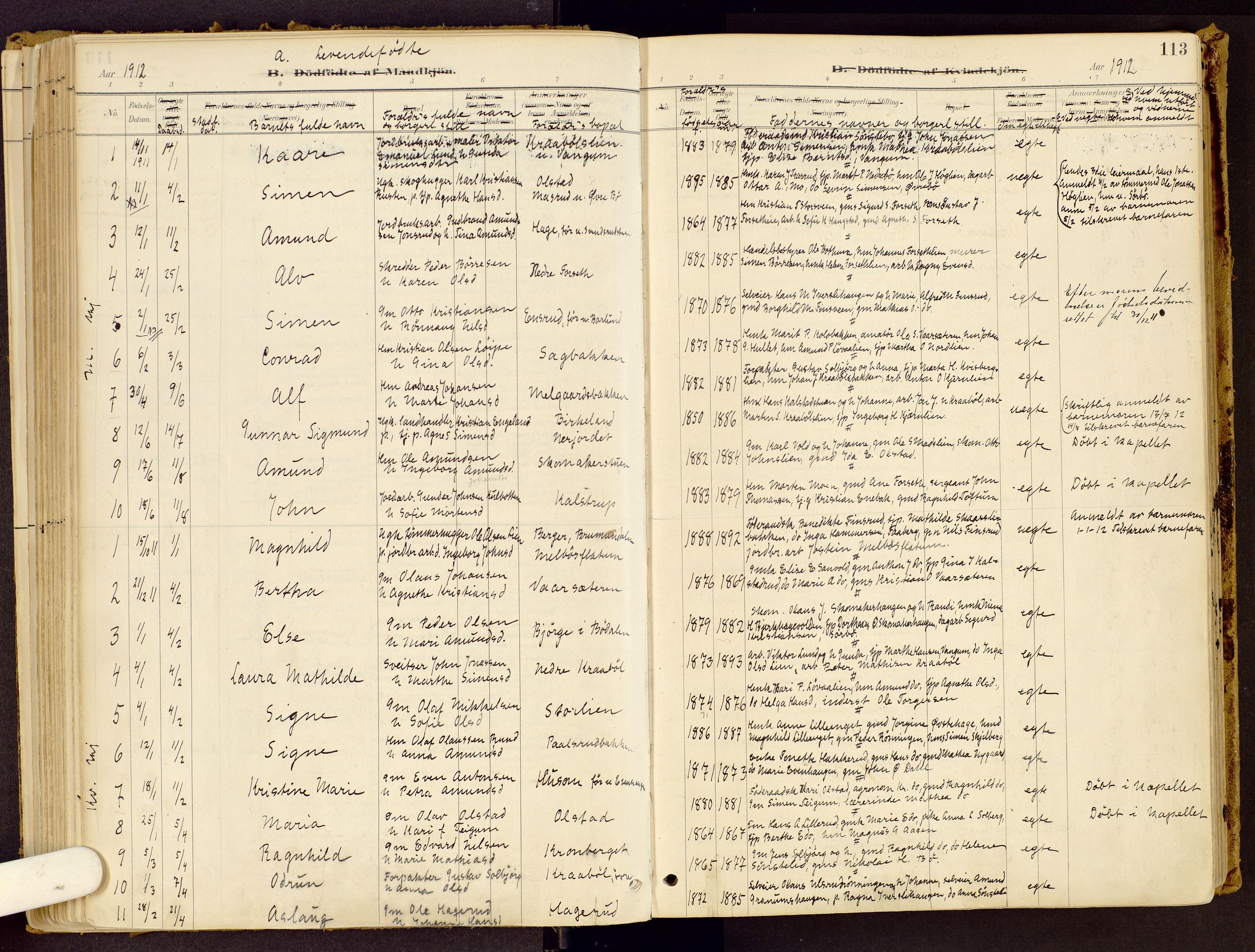 SAH, Vestre Gausdal prestekontor, Ministerialbok nr. 1, 1887-1914, s. 113
