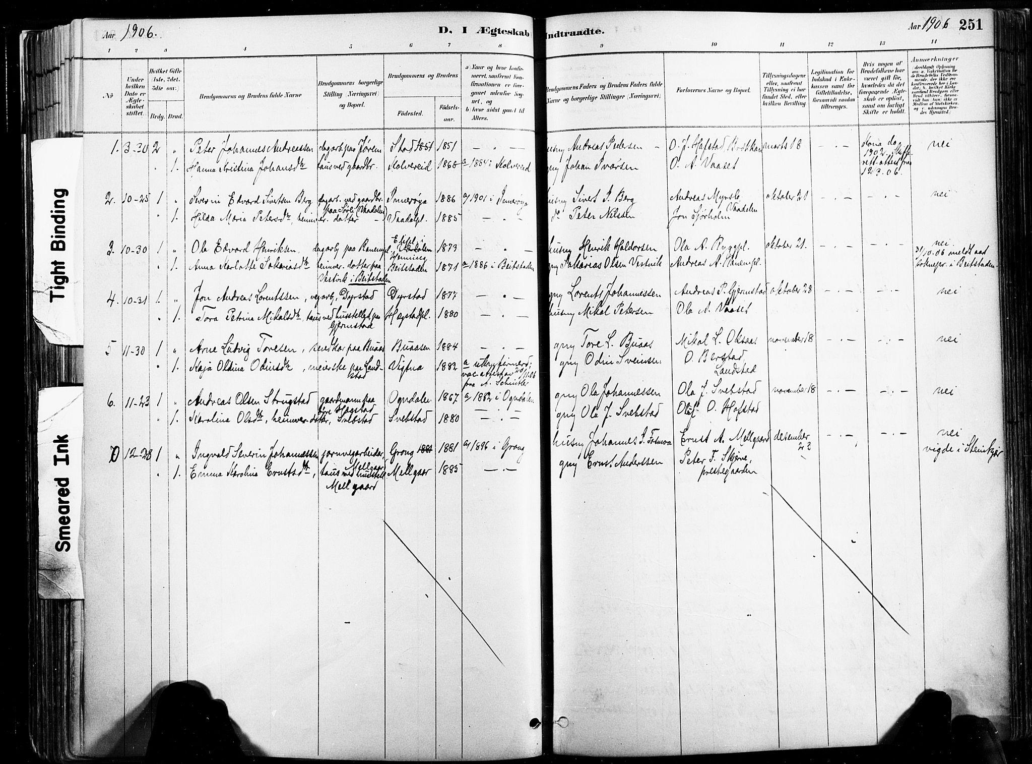 SAT, Ministerialprotokoller, klokkerbøker og fødselsregistre - Nord-Trøndelag, 735/L0351: Ministerialbok nr. 735A10, 1884-1908, s. 251
