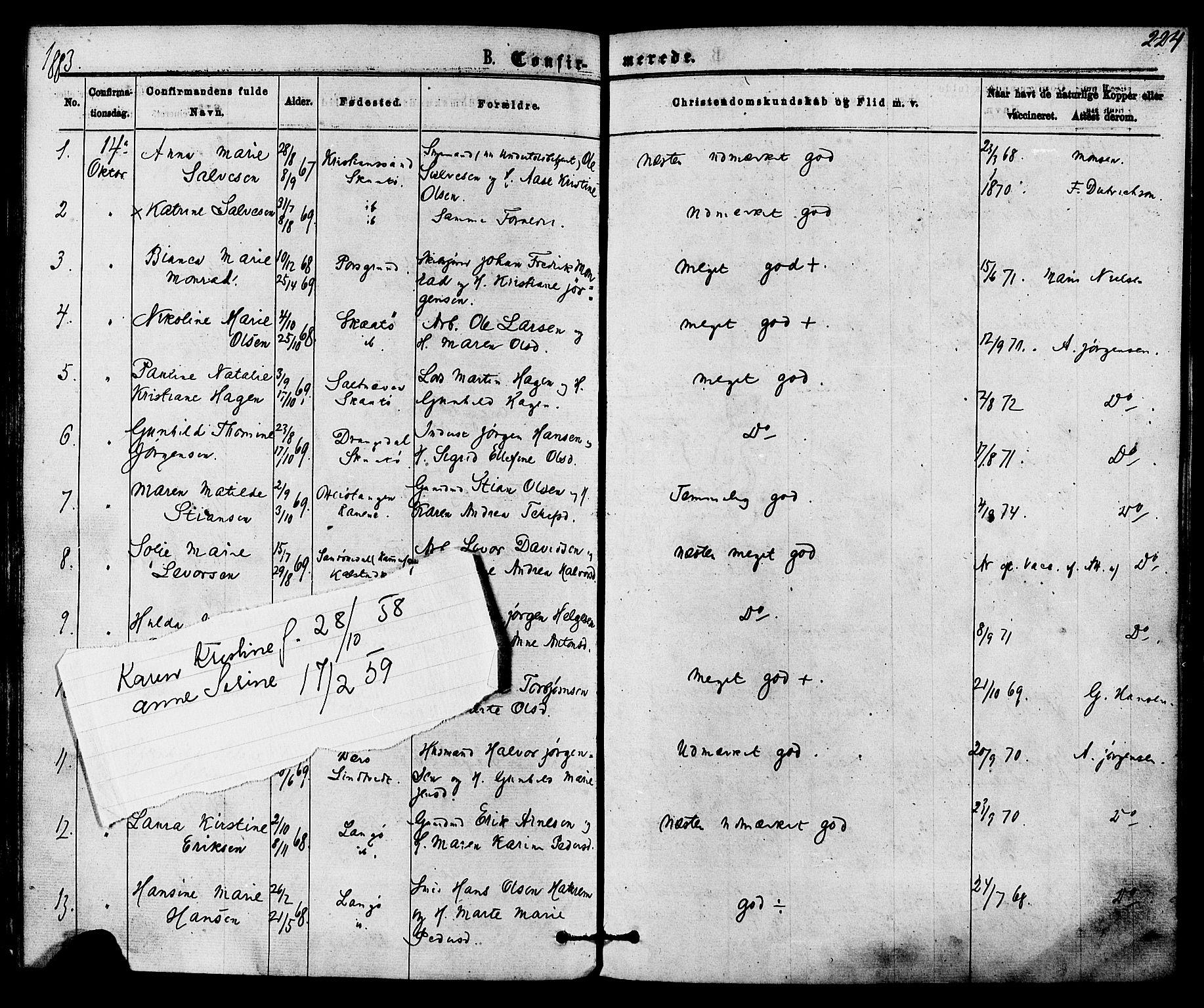 SAKO, Skåtøy kirkebøker, F/Fa/L0001: Ministerialbok nr. I 1, 1874-1883, s. 224
