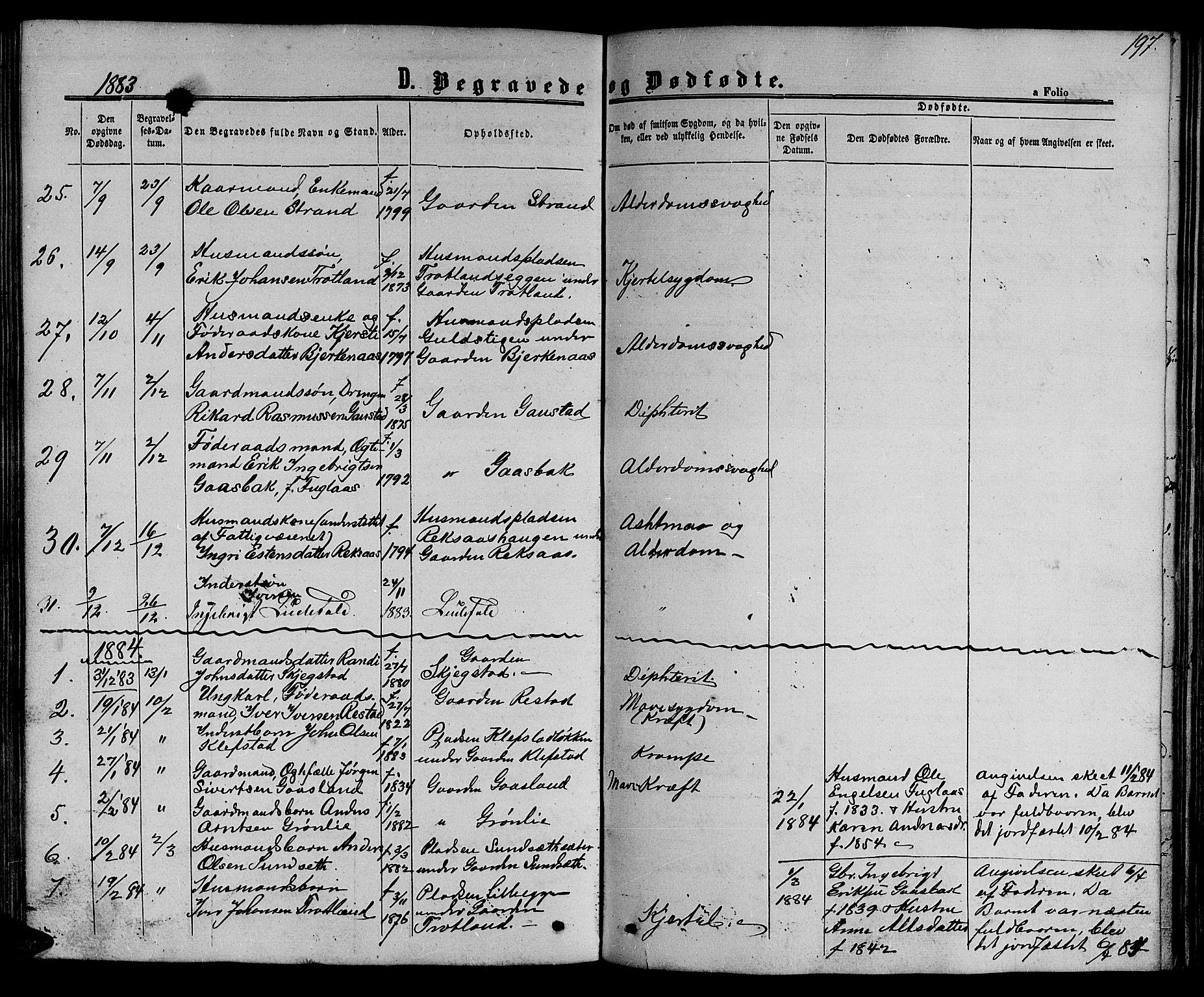 SAT, Ministerialprotokoller, klokkerbøker og fødselsregistre - Sør-Trøndelag, 694/L1131: Klokkerbok nr. 694C03, 1858-1886, s. 197