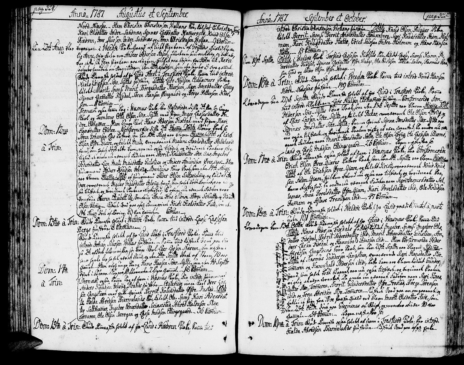 SAT, Ministerialprotokoller, klokkerbøker og fødselsregistre - Møre og Romsdal, 547/L0600: Ministerialbok nr. 547A02, 1765-1799, s. 324-325