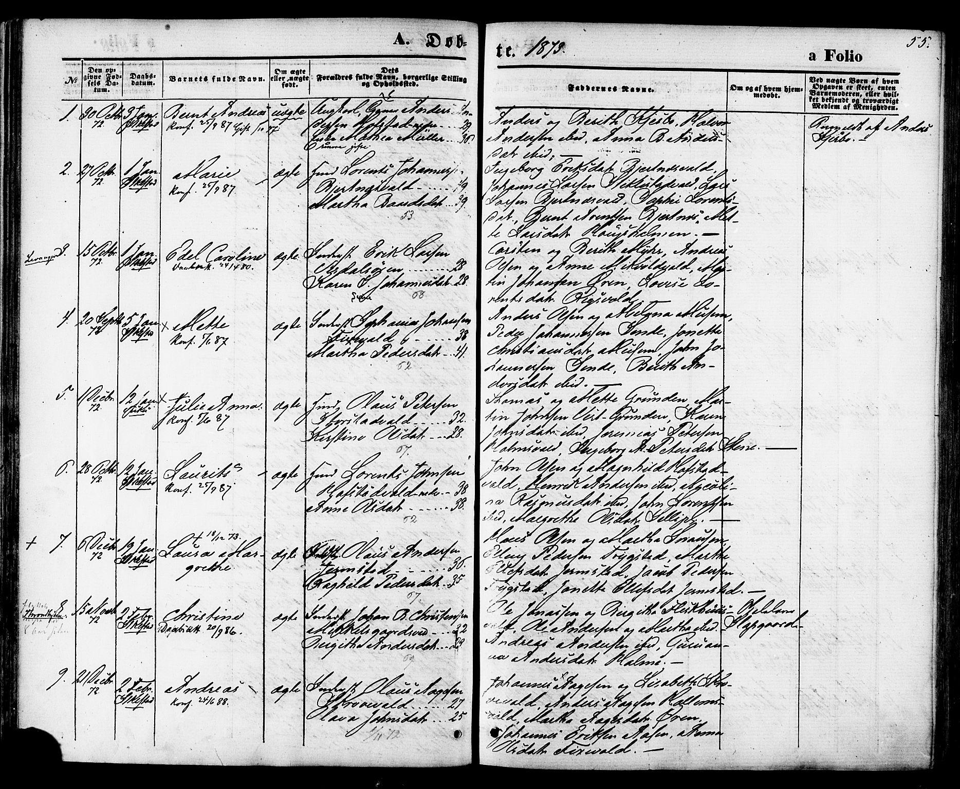 SAT, Ministerialprotokoller, klokkerbøker og fødselsregistre - Nord-Trøndelag, 723/L0242: Ministerialbok nr. 723A11, 1870-1880, s. 55
